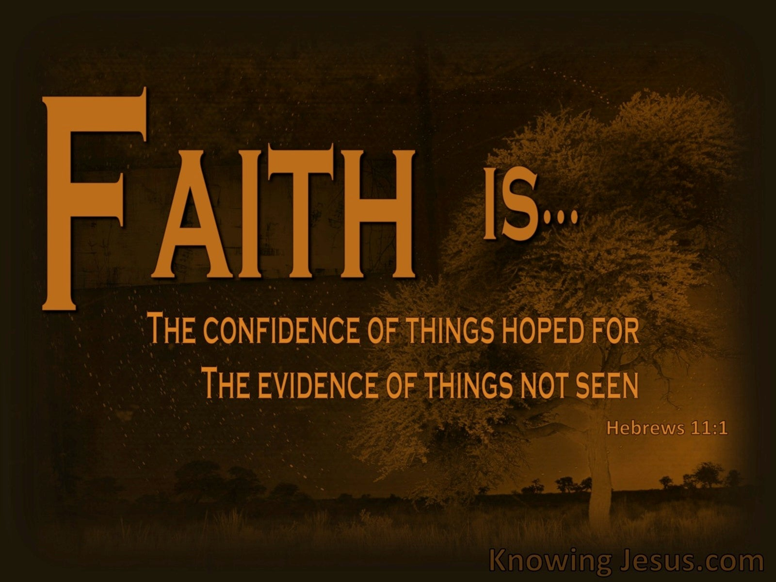Hebrews 11:1 Faith Is.. (devotional)06:11 (brown)