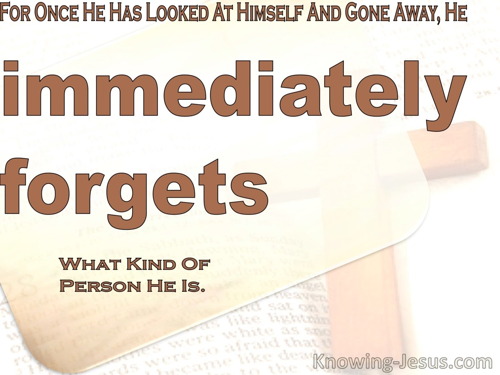 James  1-24 He Immediately Forgets What Kind Of Person He Was (brown)