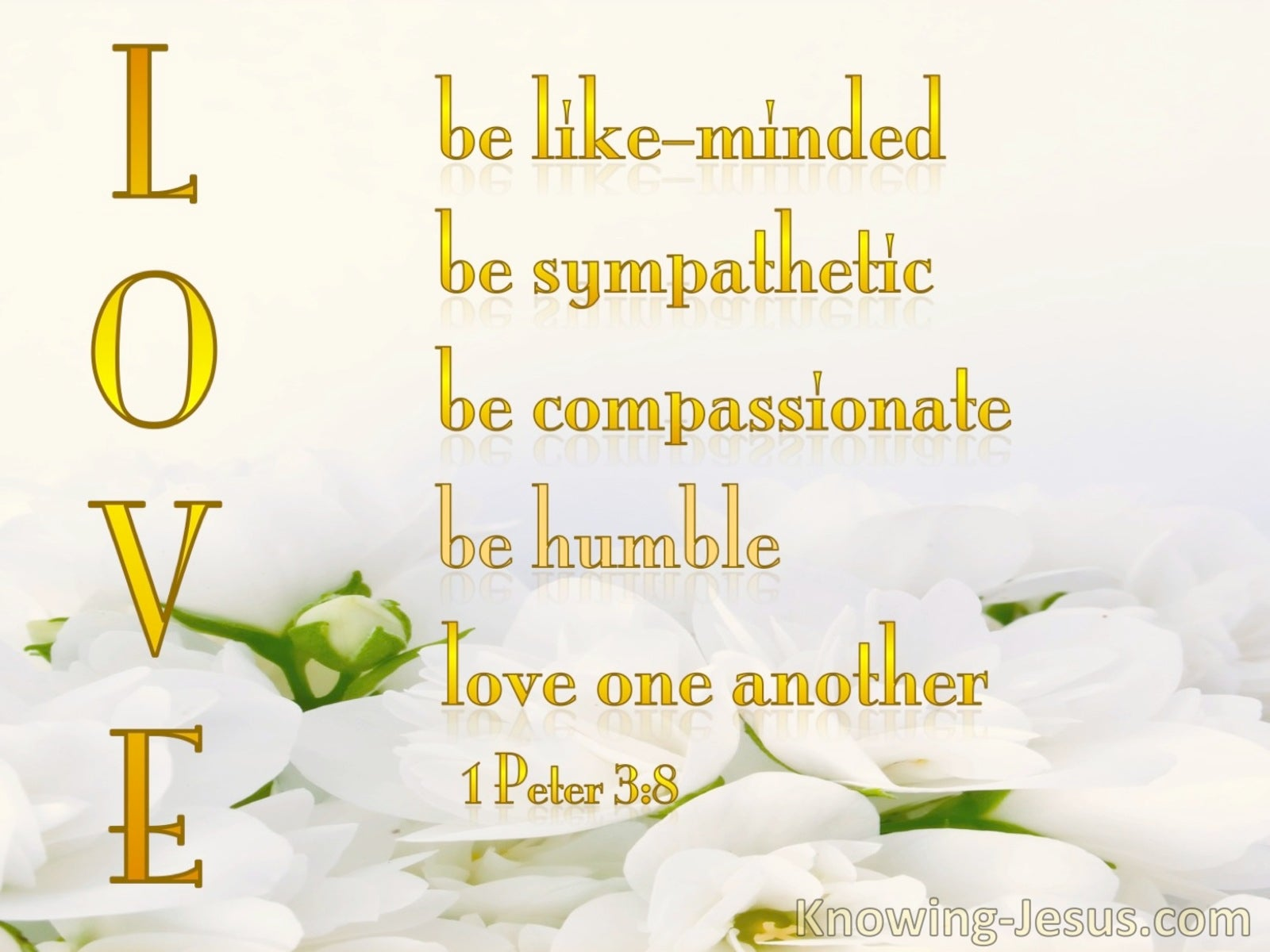 1 Peter 3:8  LOVE   :   Be Like Minded (yellow)