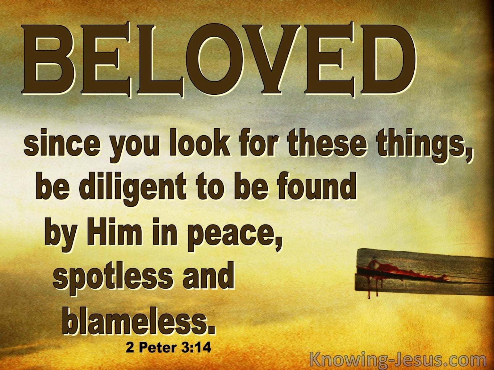 2 Peter 3:14 Be Diligent In Peace Spotless And Blameless (brown)