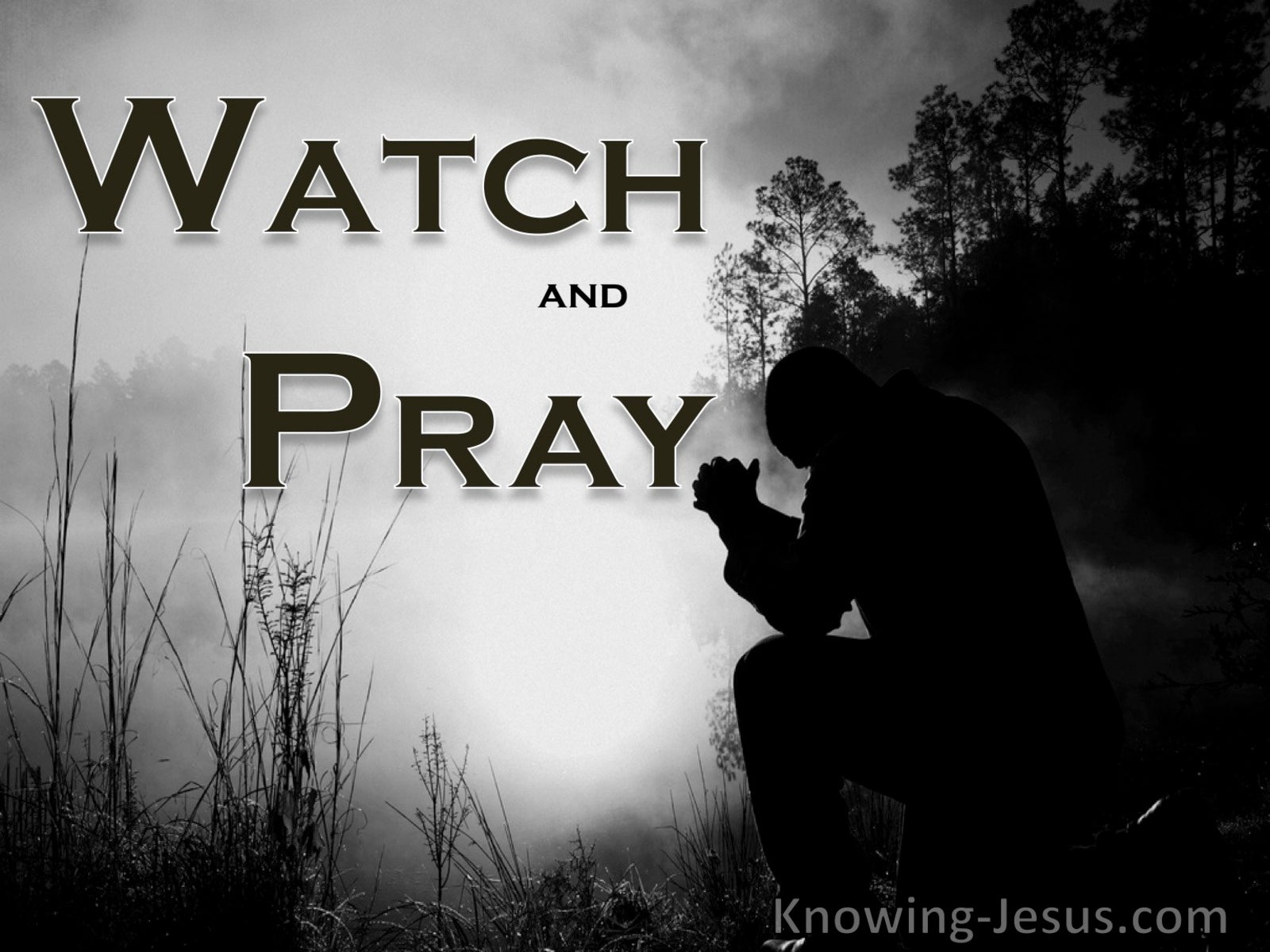 Matthew 26:41 Watch And Pray (gray)