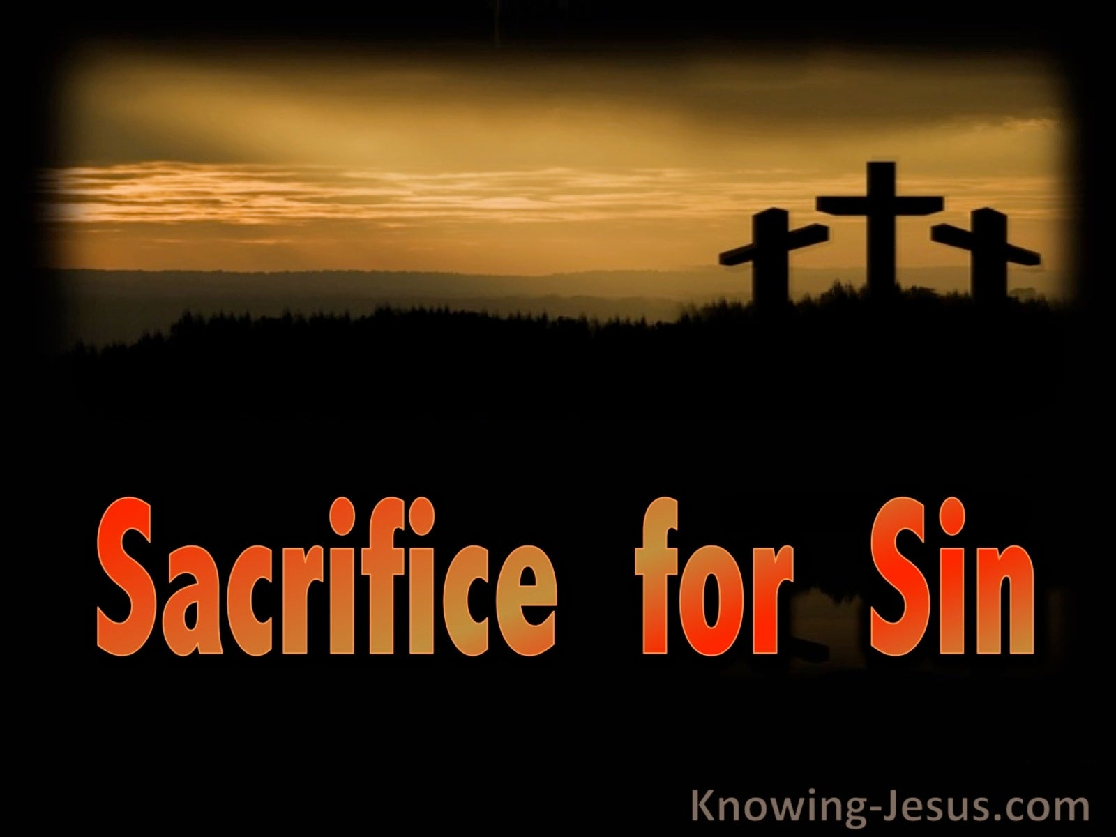 Sacrifice for Sin (devotional) (black) - Romans 8:3