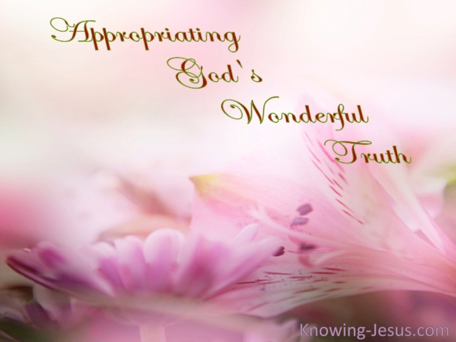 Appropriating God's Wonderful Truth (devotional) (brown)
