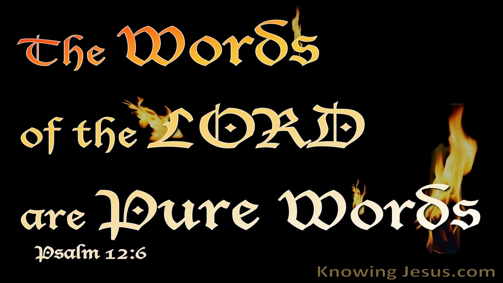 Psalm 12:6 The Words Of The Lord Are Pure (black)