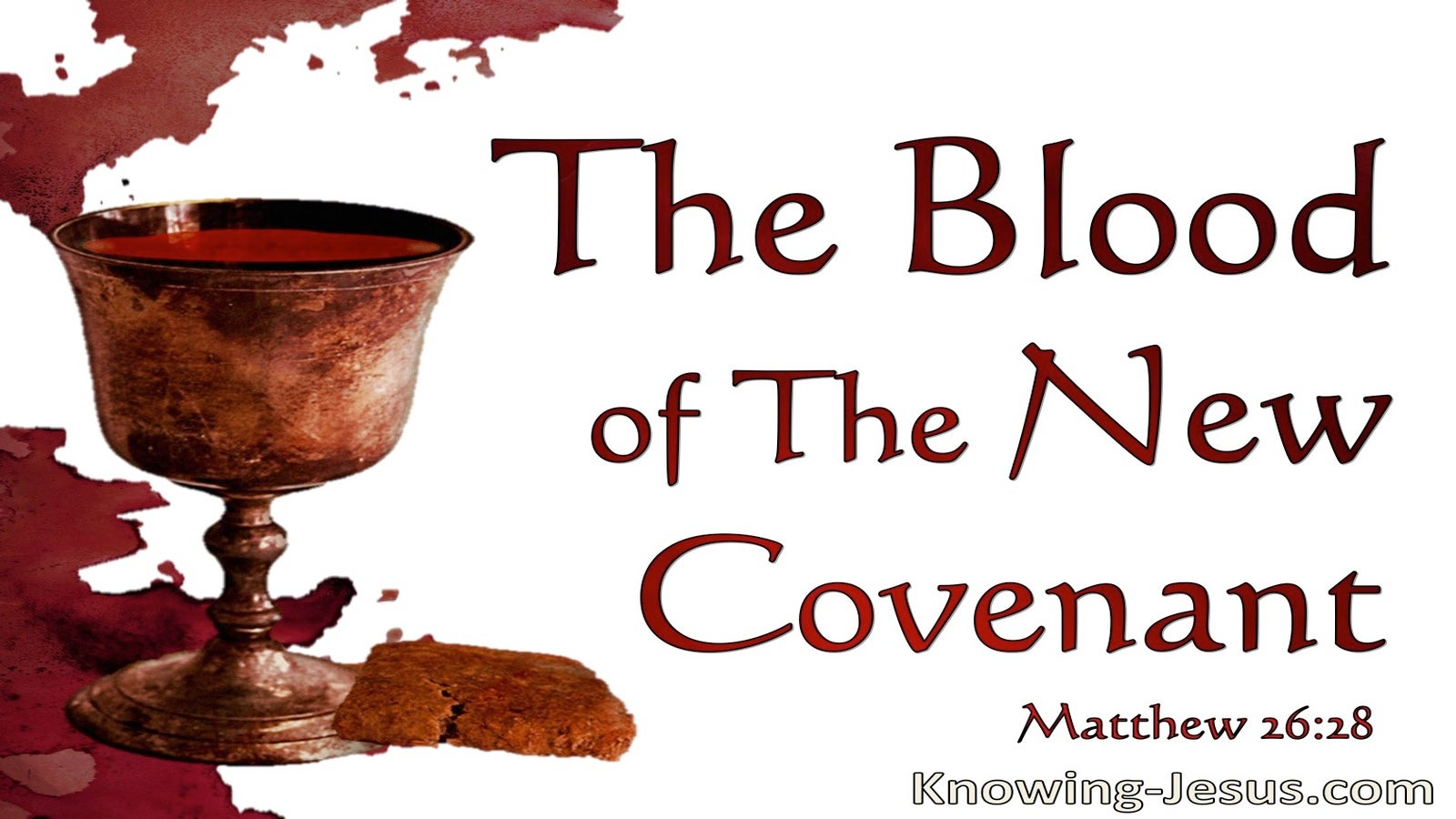 Matthew 26:28 The Blood Of The New Covanamt (white)