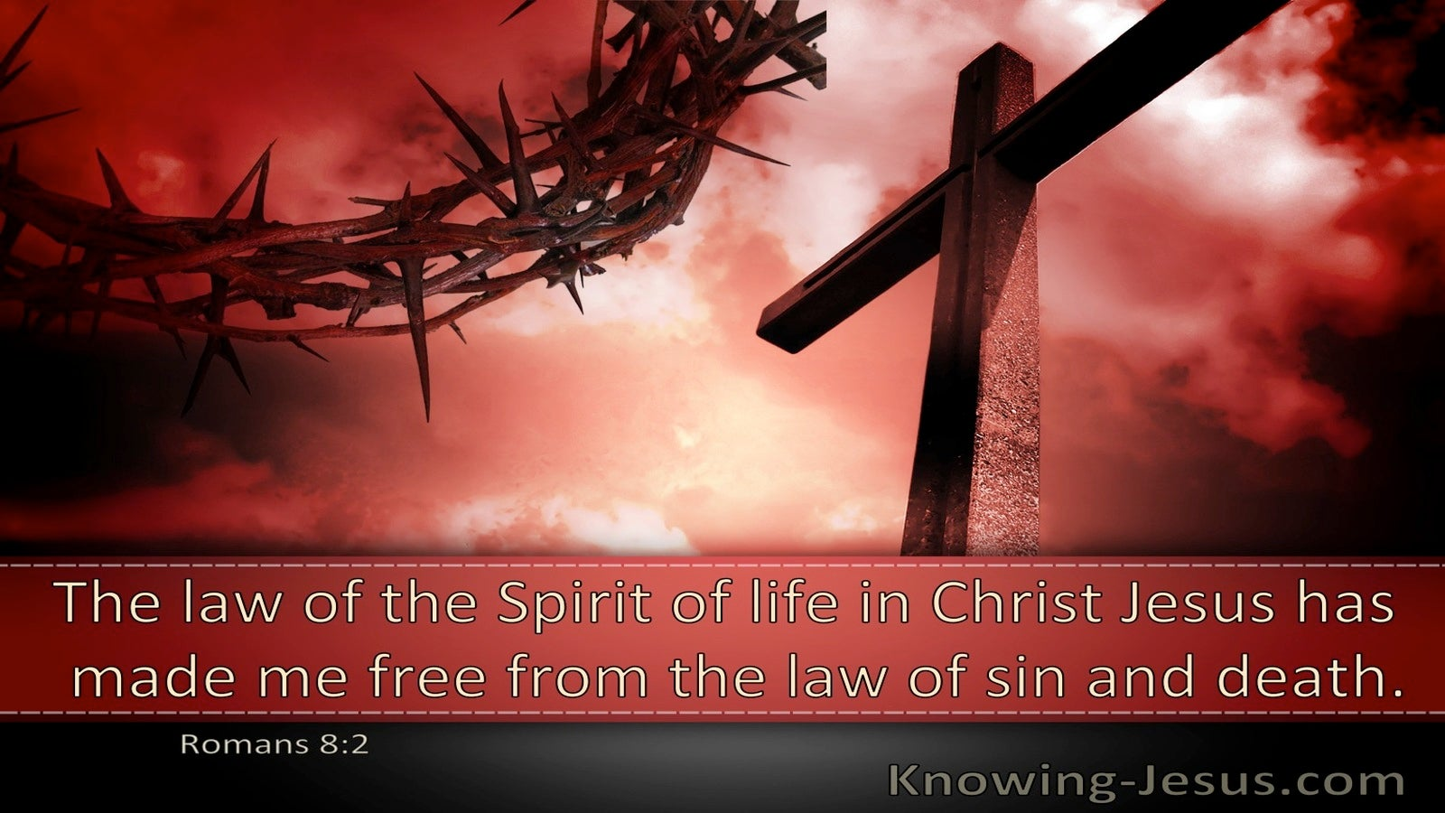 Romans 8:2 The Law Of The Spirit Of Life In Christ Jesus Has Made Me Free (windows)01:13