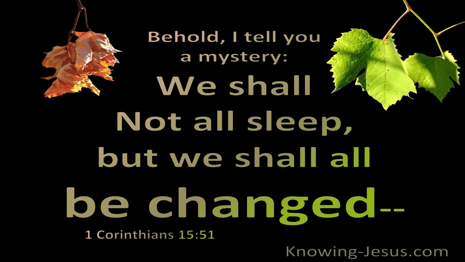 1 Corinthians 15:51  Behold I Tell You A Mystery (black)