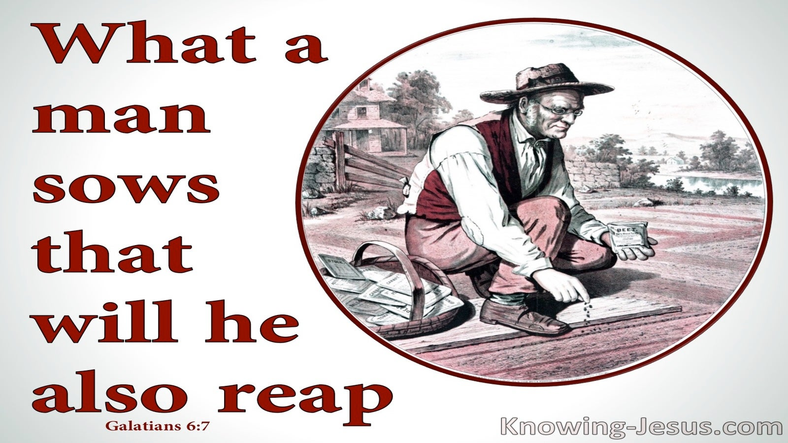 Galatians 6:7 What An Man Sows He Will Reap (red)