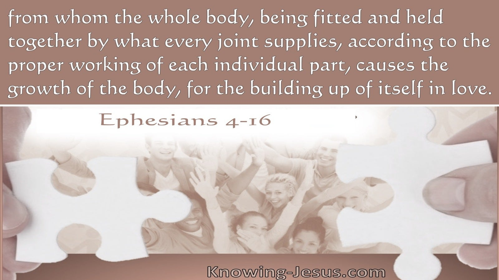 Ephesians 4:16 The Whole Body, Being Fitted And Held Together (brown)