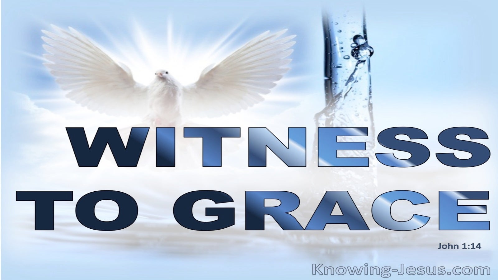John 1:14 Witness to Grace (devotional)09:30 (blue)