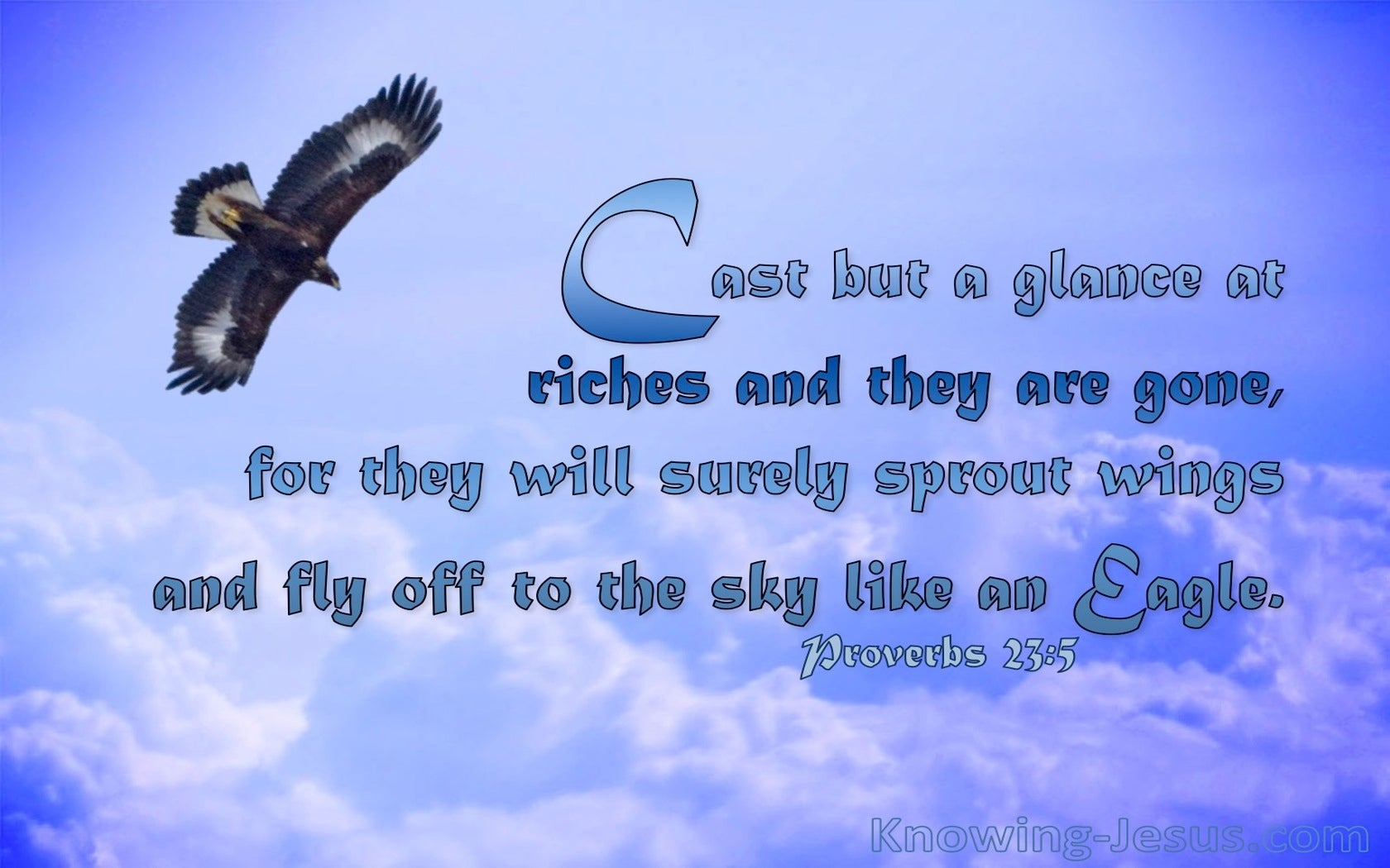 Proverbs 23:5 Cast But A Glance At Riches (blue)
