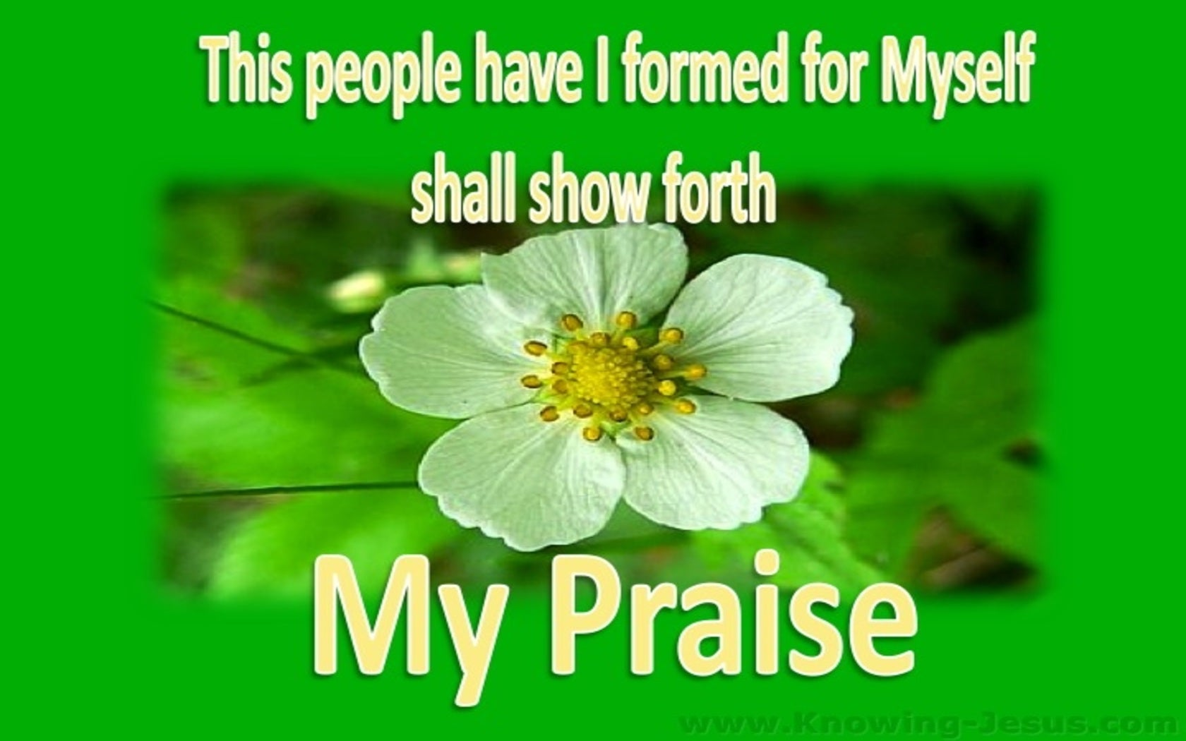 Isaiah 43:21 They Shall Show Forth My Praise (green)