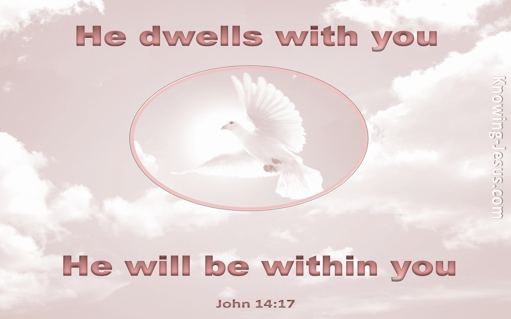 John 14:17 He Will Be In You (pink)