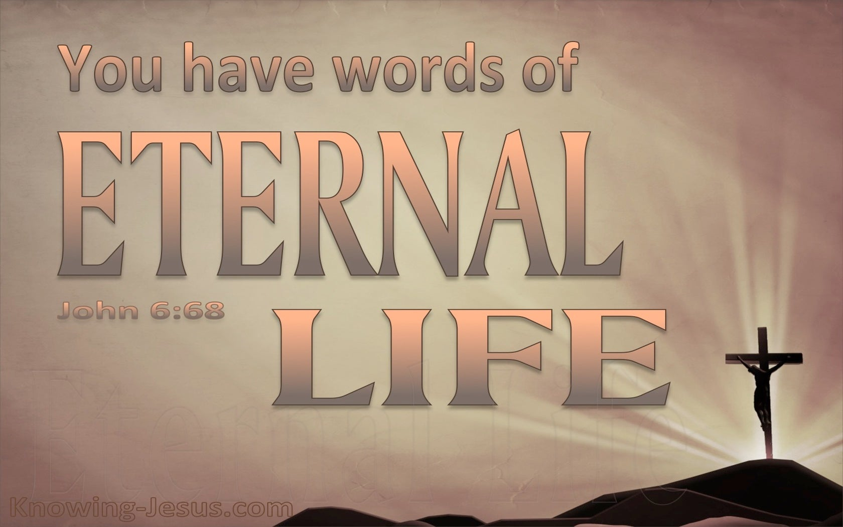 John 6:68 You Have The Words Of Eternal Life (pink)