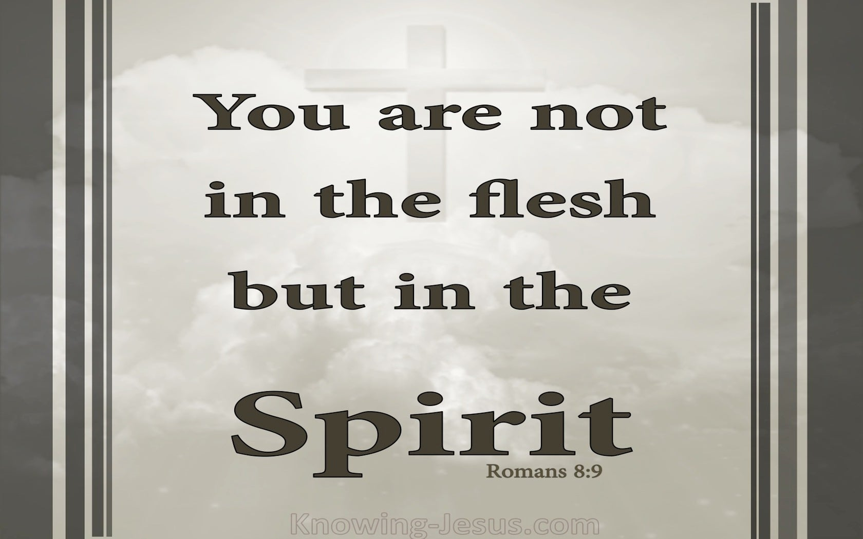 Romans 8:9 Not In The Flesh But In The Spirit (gray)