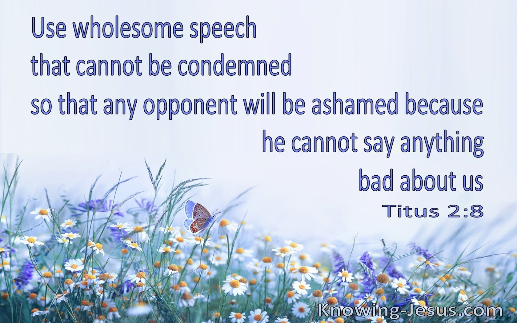 Titus 2:8  Your Message Is To Be Sound In Speech And Beyond Reproach (blue)