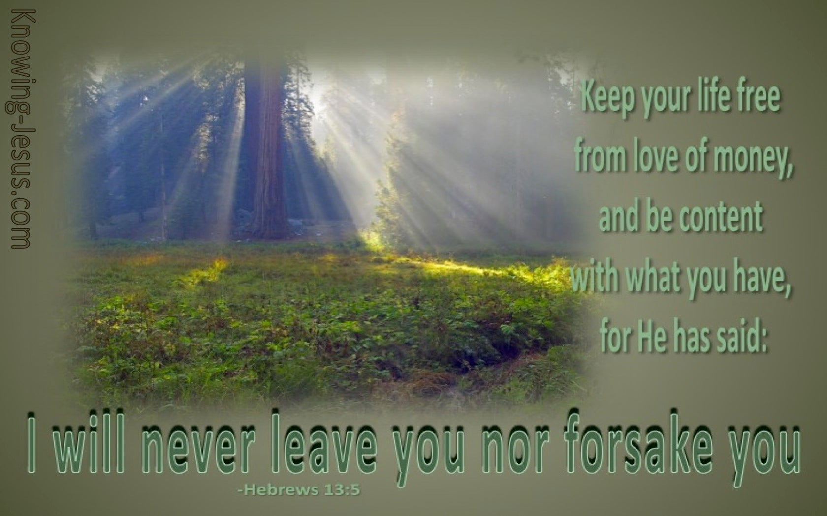 Hebrews 13:5 I Will Not Leave You (sage)