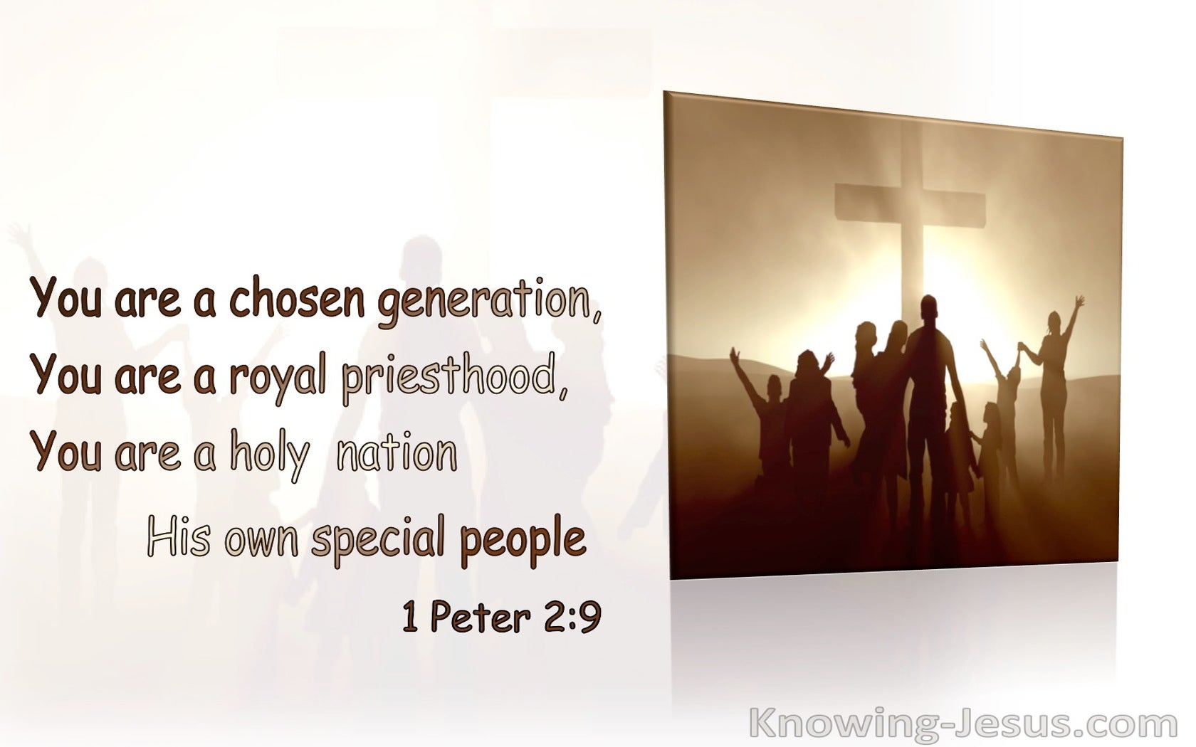 1 Peter 2:9 You Are A Chosen Nation, A Royal Priesthood, A Holy Nation (brown) (brown)