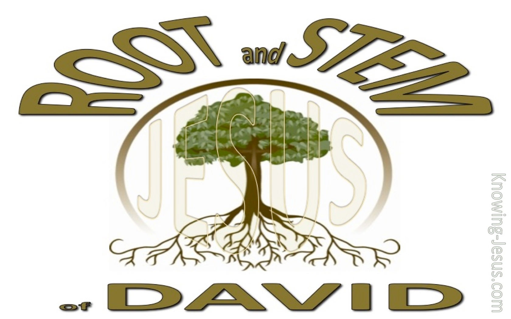 Root and Stem of David (devotional) (white) - Revelation 22:16