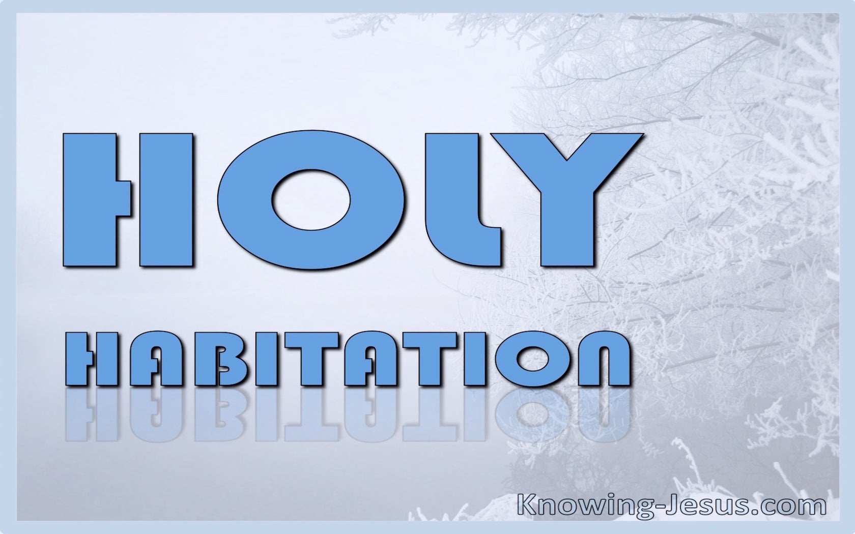 Holy Habitation (devotional) (blue)