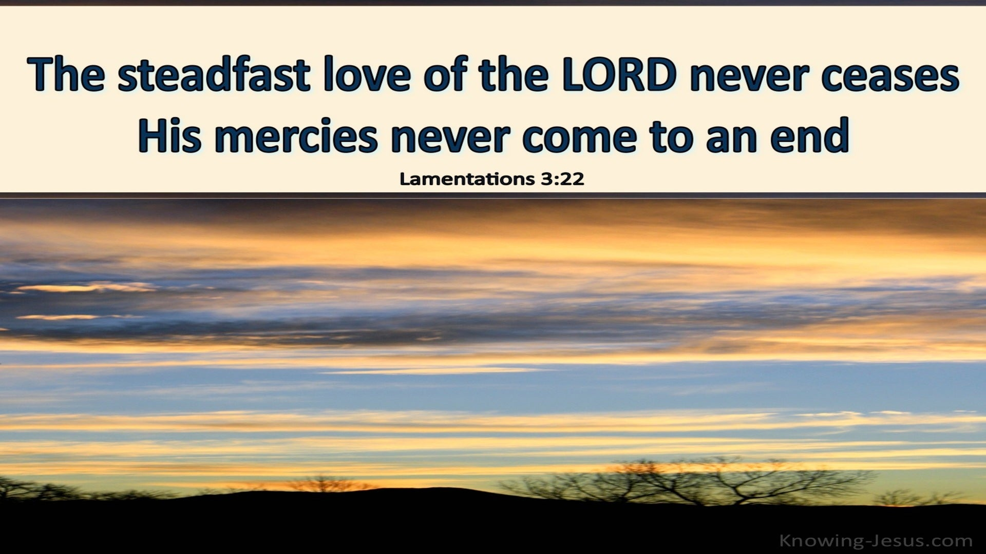 Lamentations 3:22 The Steadfast Love Of The Lord Never Fails (cream)