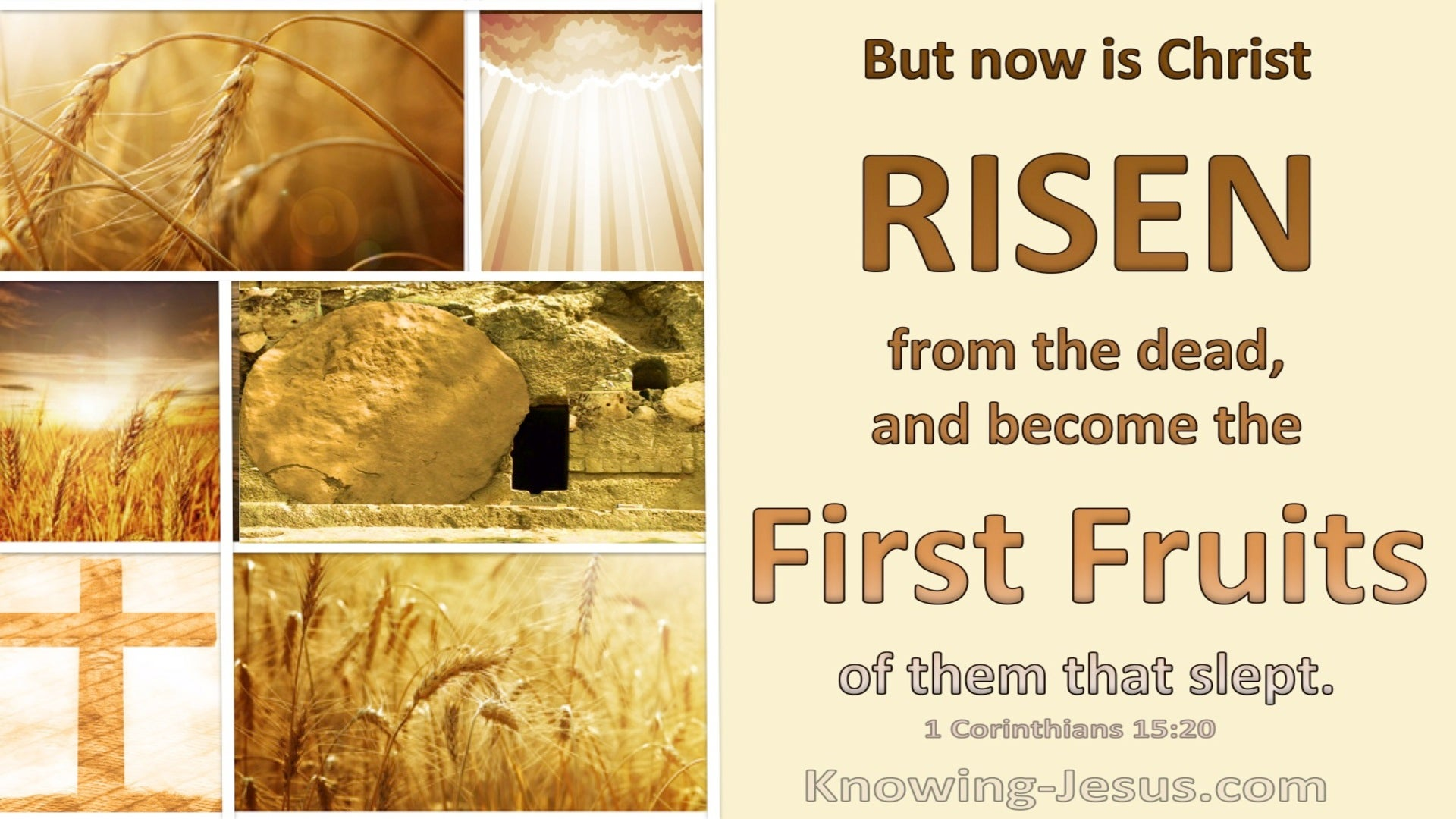 1 Corinthians 15:20 Christ Is Risen The Firstfruit Of Them That Slept (beige)