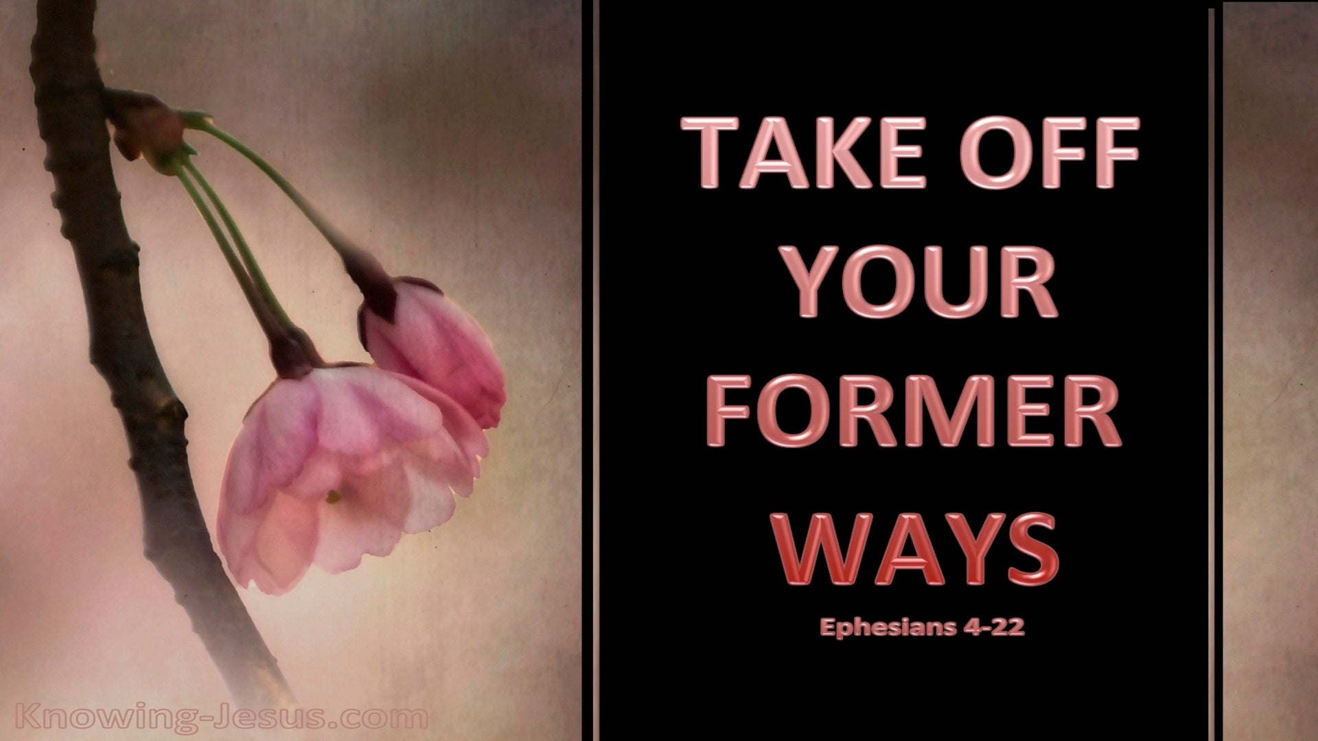 Ephesians 4:22 Take Off Your Former Ways (brown)