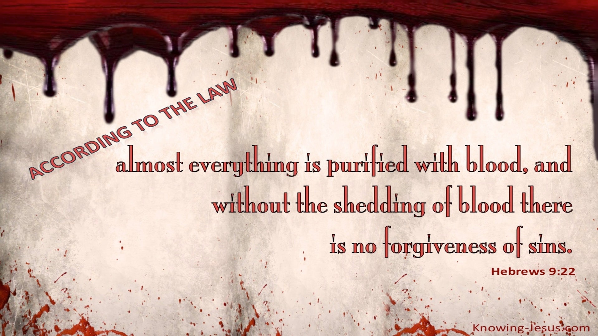 Hebrews 9:22 No Forgiveness Without The Shedding of Blood (red)