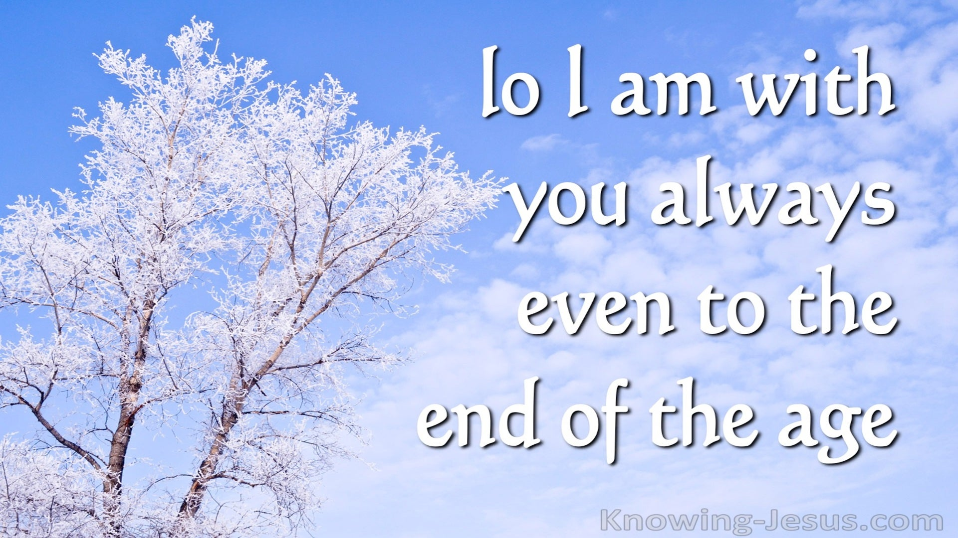 Matthew 28:20 Lo I Am With You Always (blue)