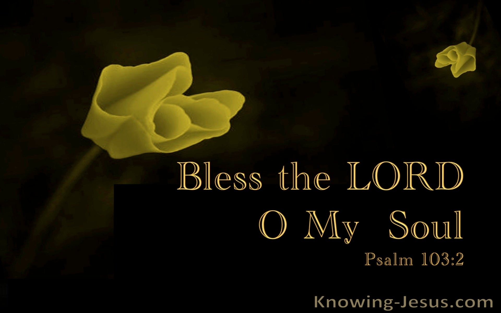 Psalm 103:2 Bless the LORD O My  Soul (yellow)