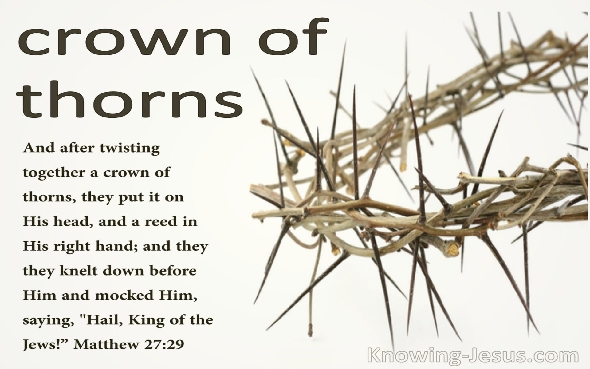 Matthew 27:29 They Twisted Together A Crown Of Thorns (cream)