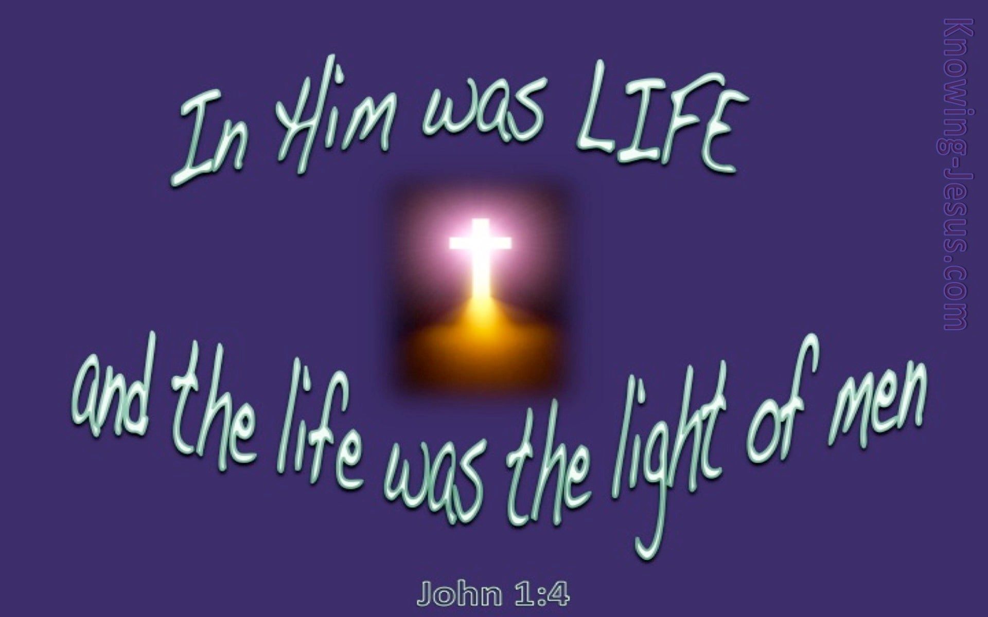 John 1:4 In Him Was Life (purple)