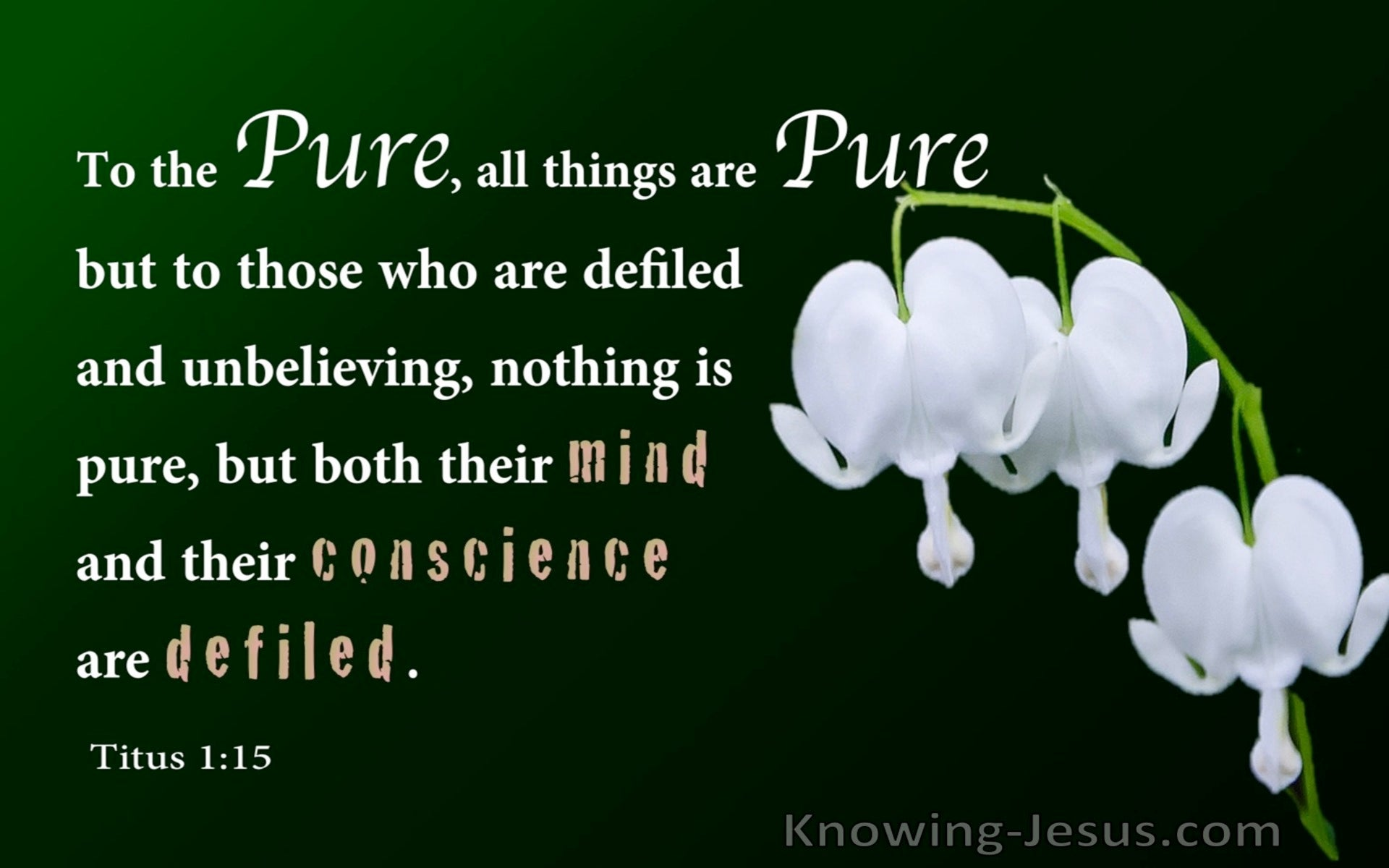 Titus 1:15 To The Pure All Things Are Pure (green)