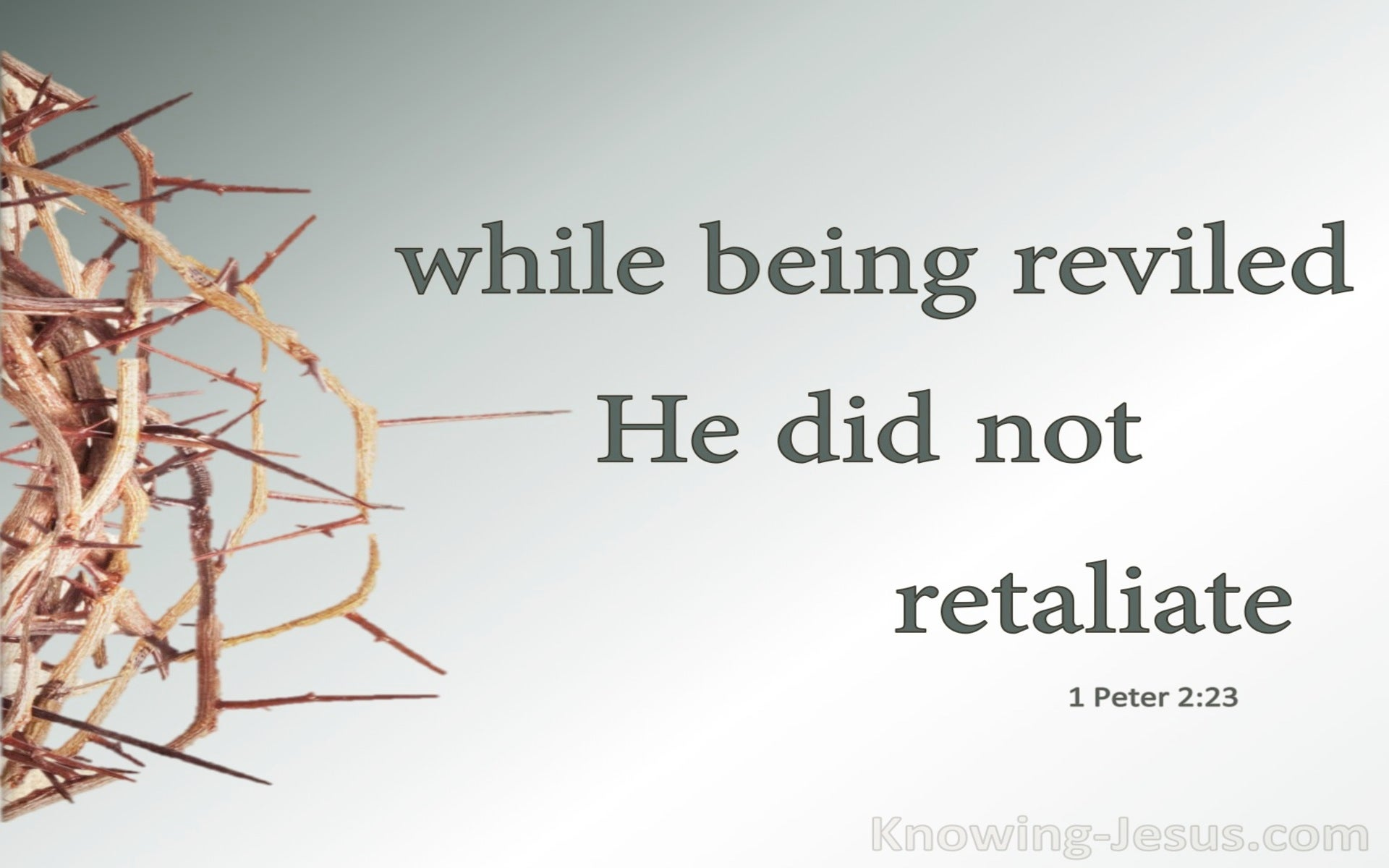 1 Peter 2:23 While Being Reviled He Did Not Revile In Return (sage)