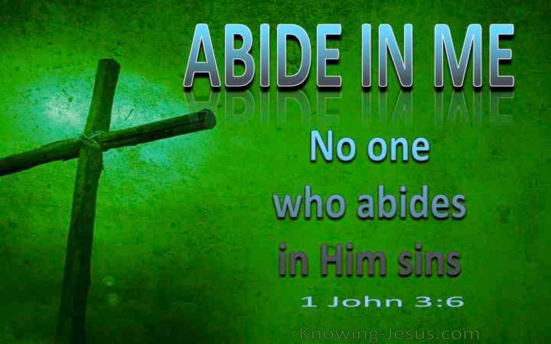 1 John 3:6 No On Who Abides In Me Sins (green)