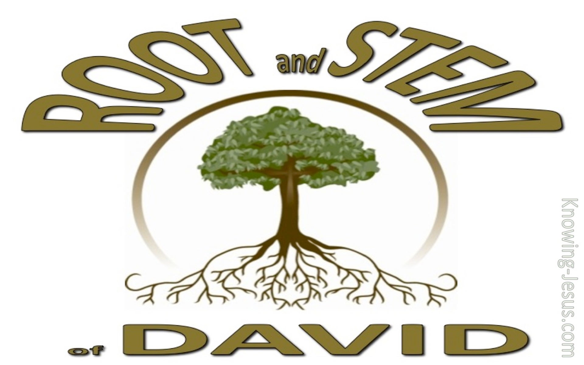 Revelation 22:16 Root and Stem of David (devotional) (white)