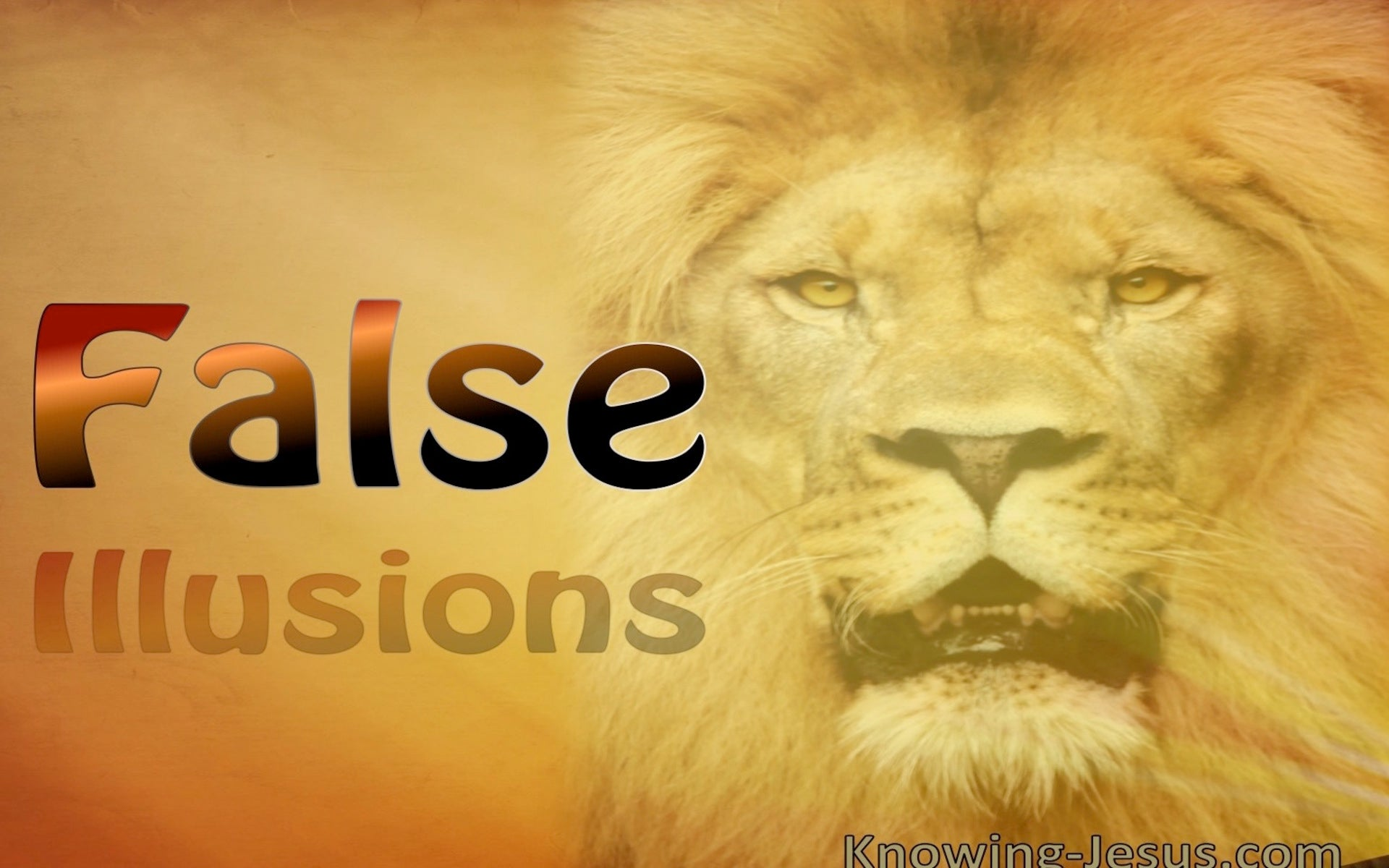 False Illusions (devotional) (beige)  John 2-24