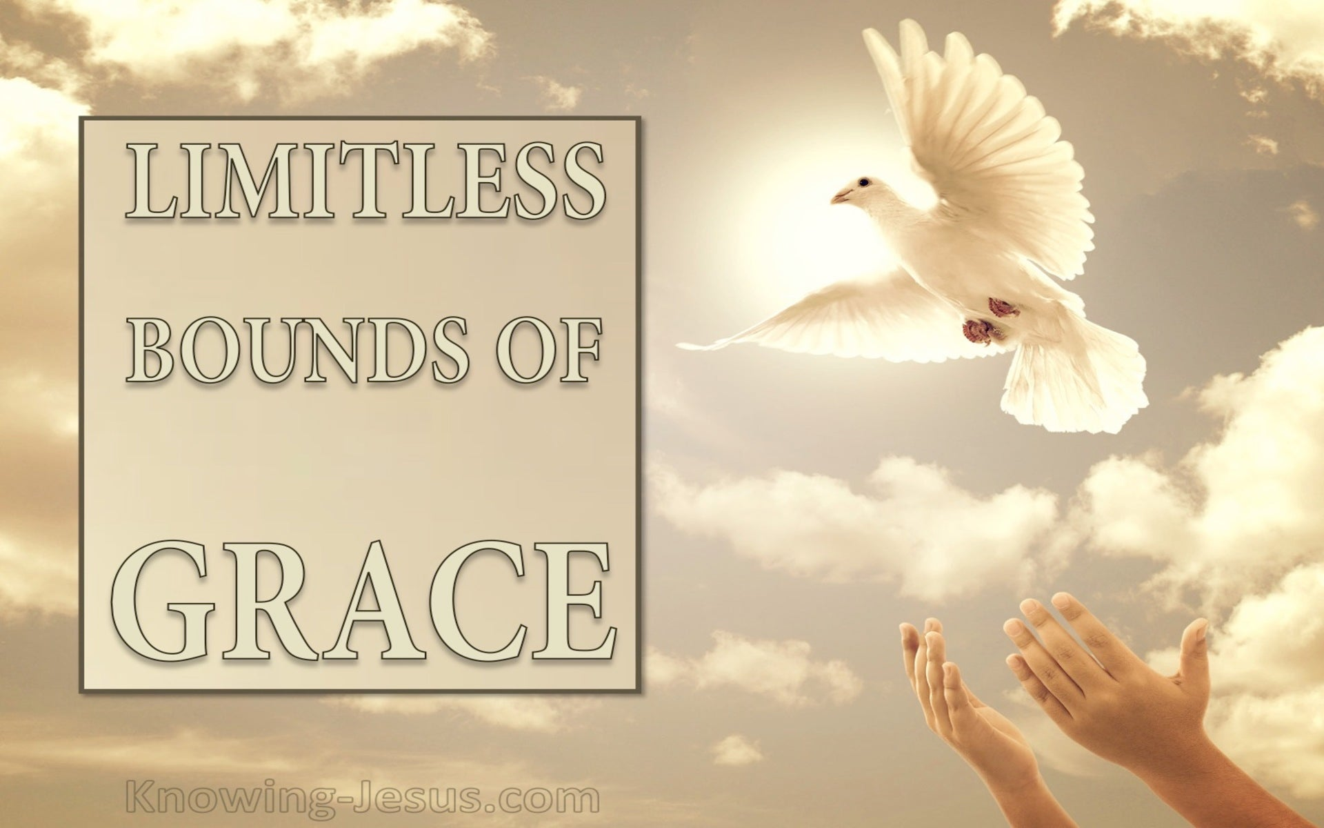 Limitless Bounds of Grace (devotional)02-11 (cream)