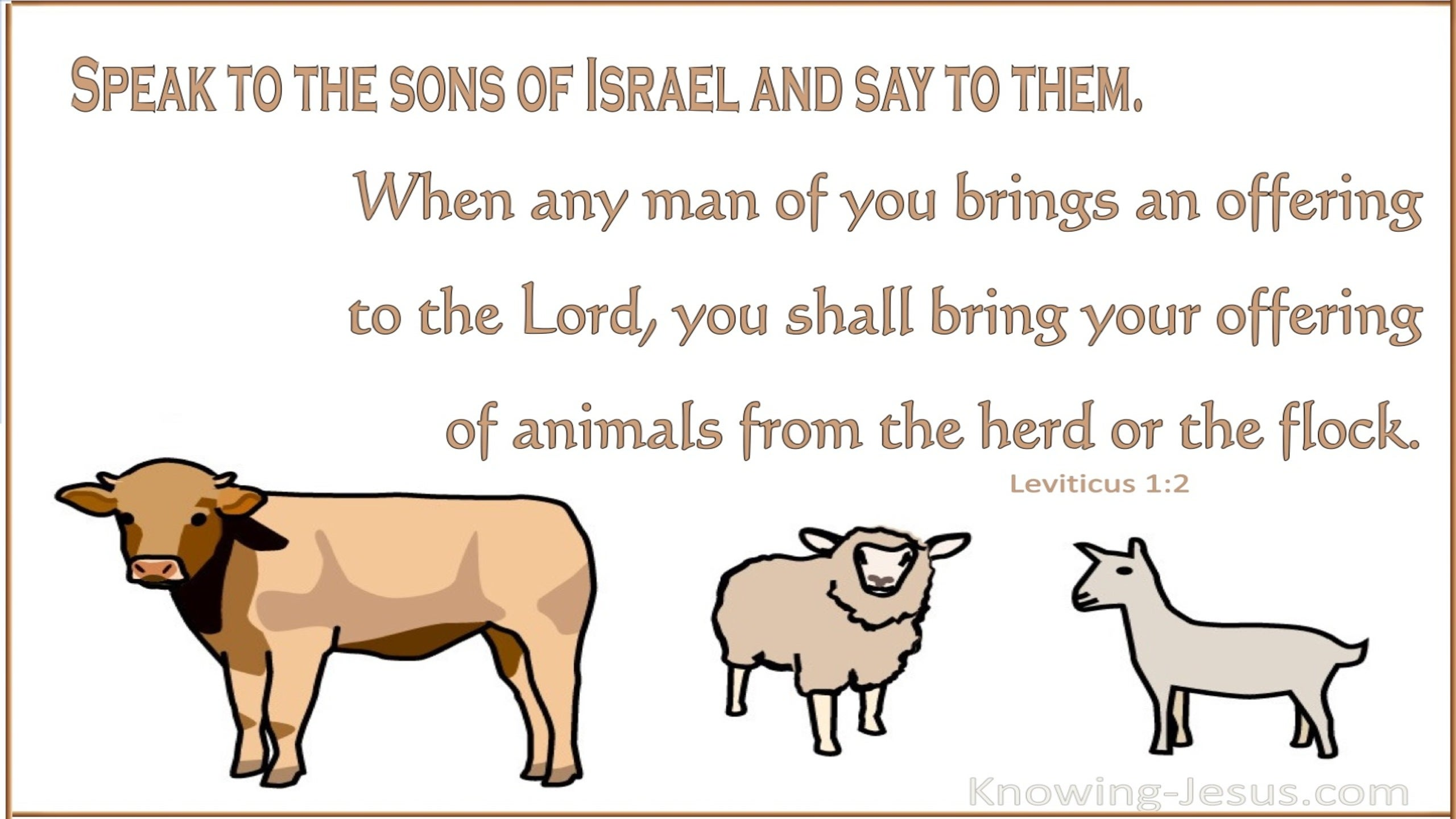 Leviticus 1:2 Bring Your Offering Of Animals From The Herd Or The Flock (white)