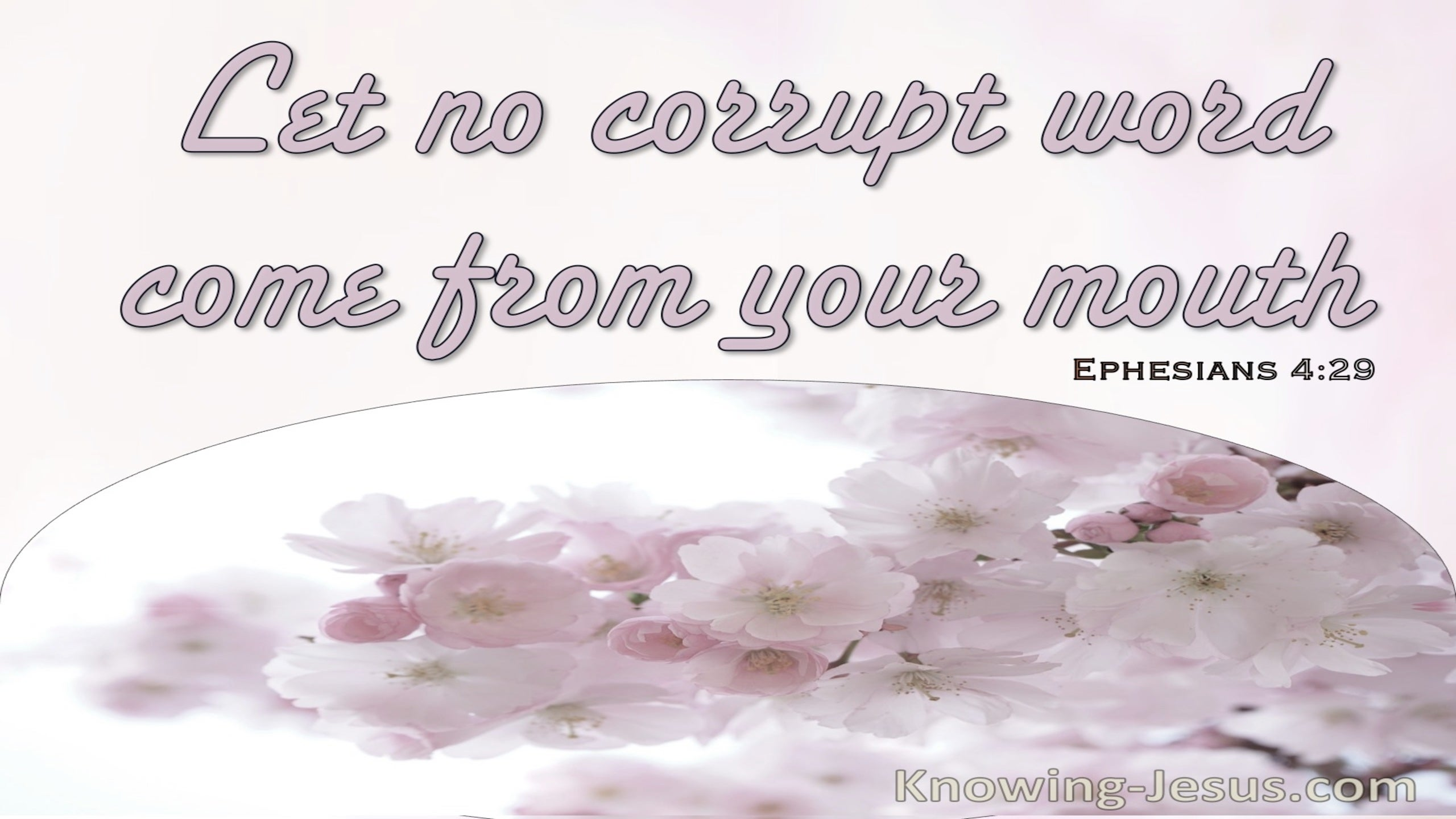 Ephesians 4:29 Let No Corrupt Words Come From Your Mouth (pink)