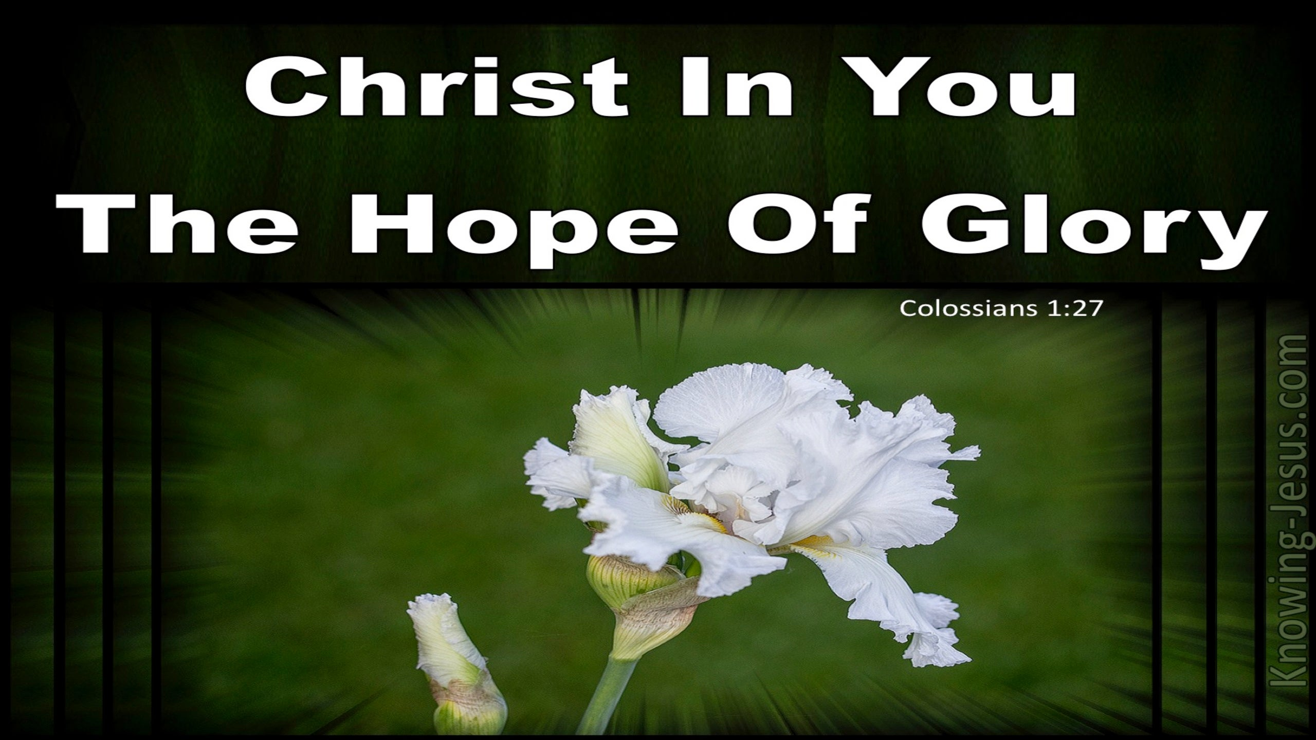 Colossians 1:27 Christ In You The Hope Of Glory (white)