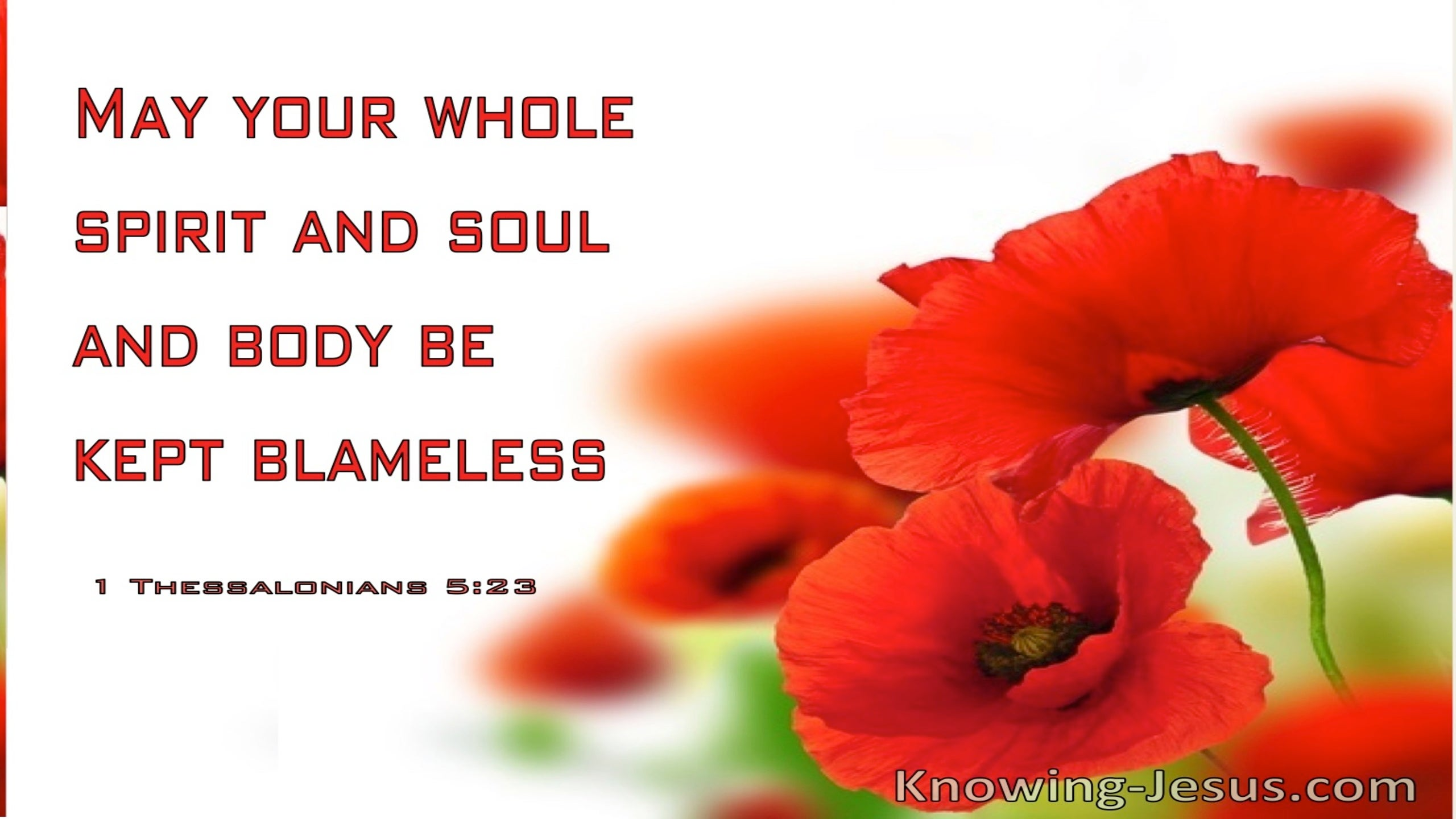 1 Thessalonians 5:23 May Your Whole Spirit, Soul And Body Be Kept Blameless (windows)03:02