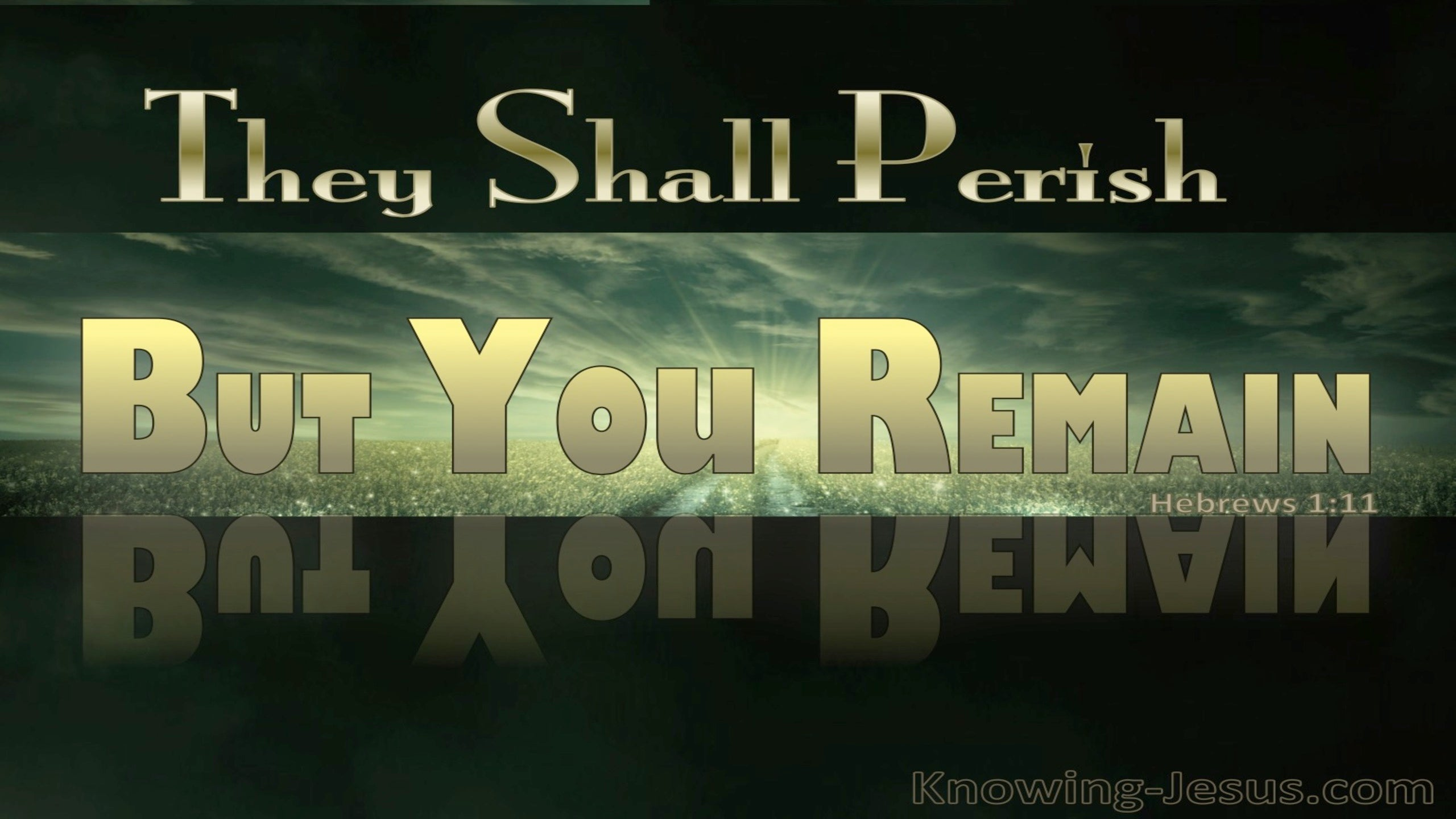 Hebrews 1:11 They Shall Perish But You Remain (gold)