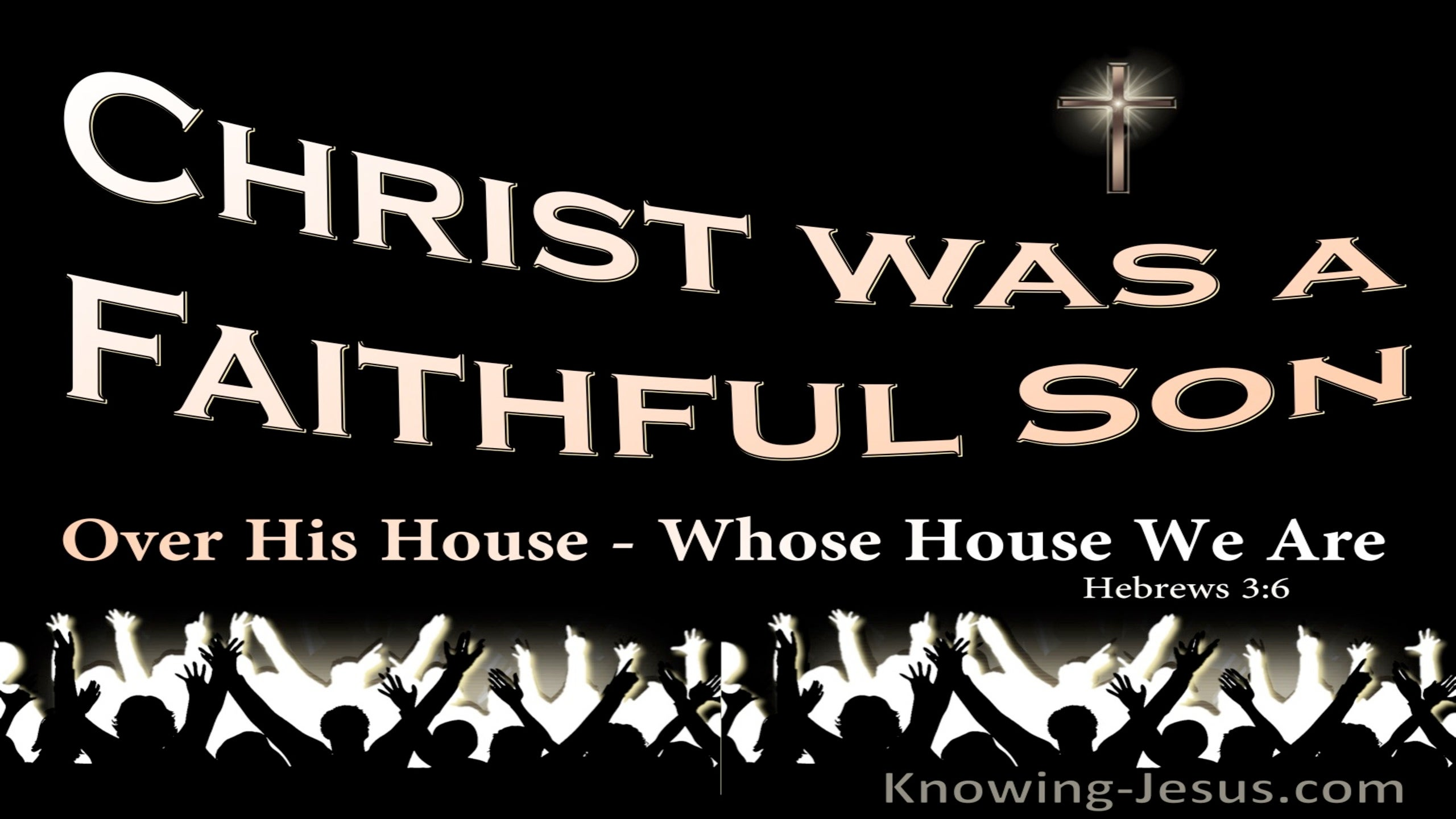 Hebrews 3:6 Christ Was A Faithful Son Over All His House (black)