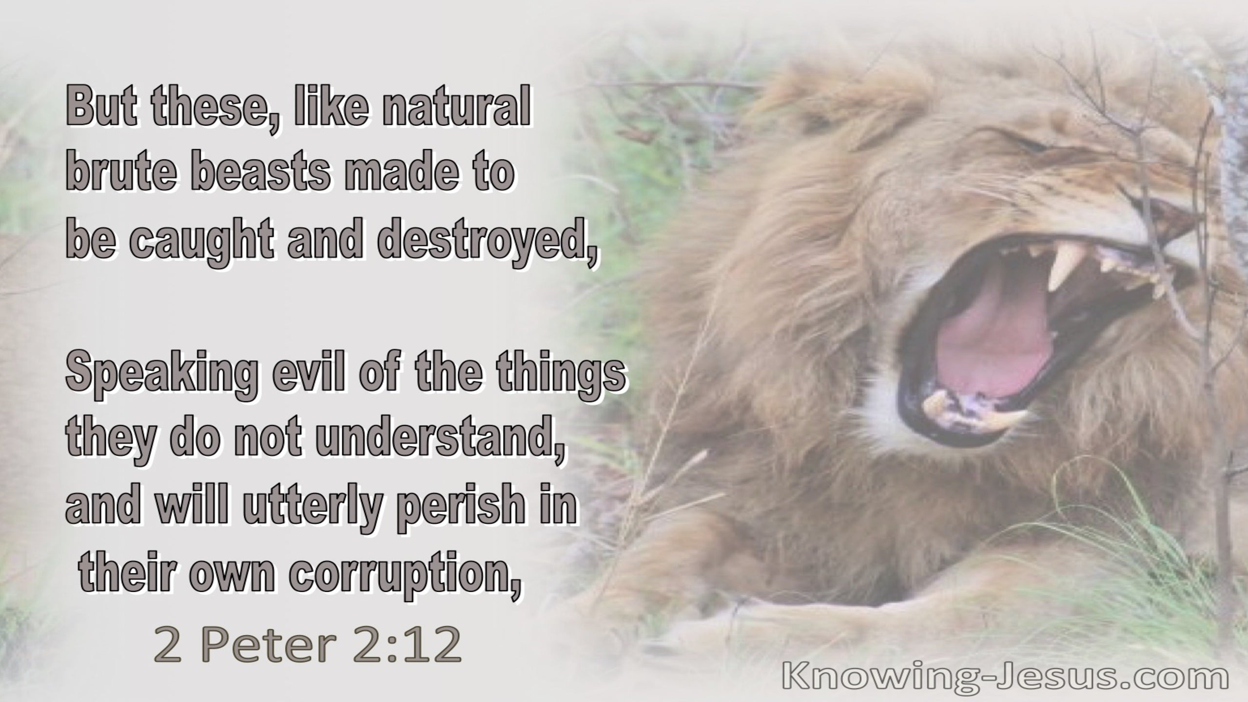 2 Peter 2:12 Brute Beasts Speaking Evil Of Things They Do Not Understand Will Perish In Their Own Corruption (brown)