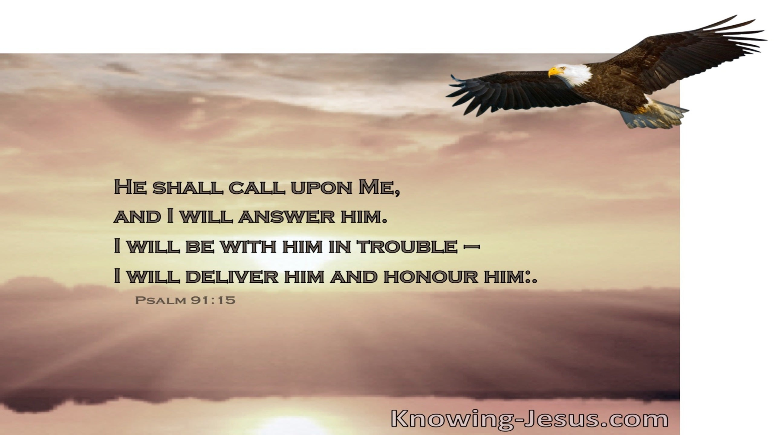 Psalm 91:15 His Tender Mercies (devotional)06-15 (brown)