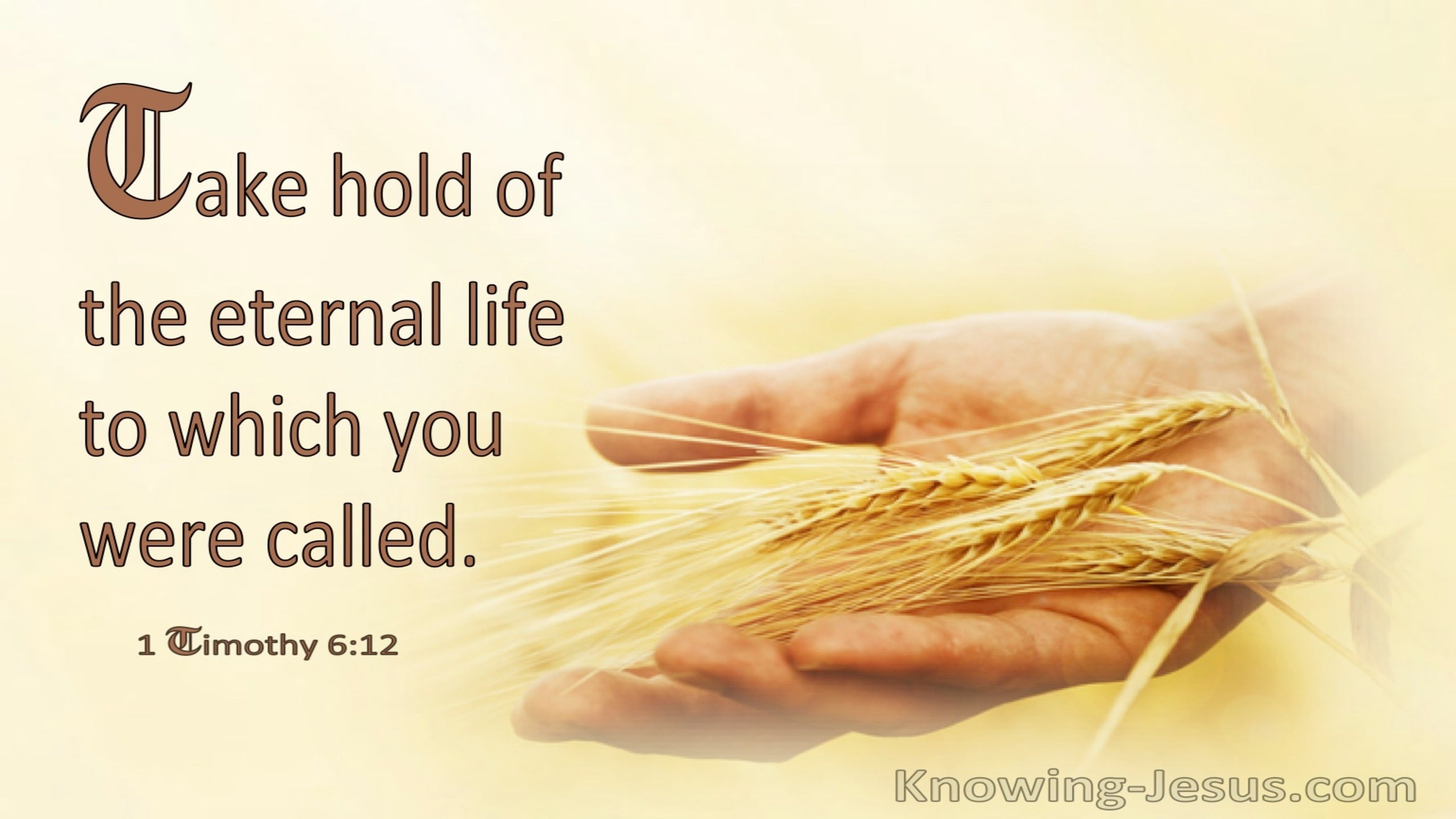 1 Timothy 6:12 Take Hold Of Eternal Life (windows)01:31