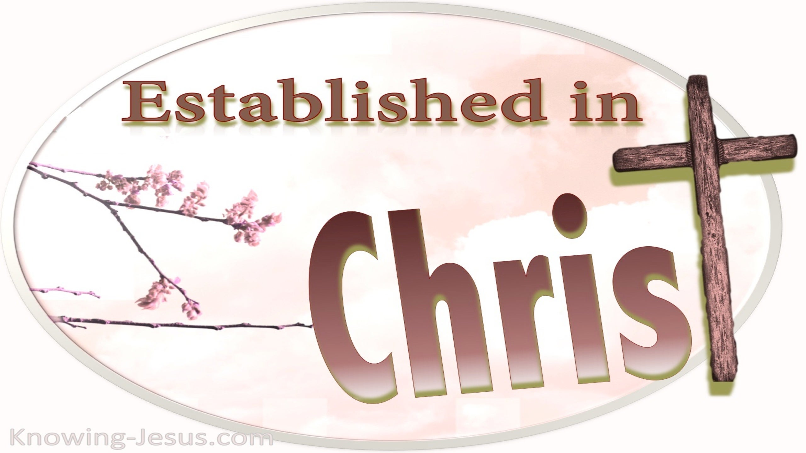 Colossians 2:7 Established in CHRIST (pink)