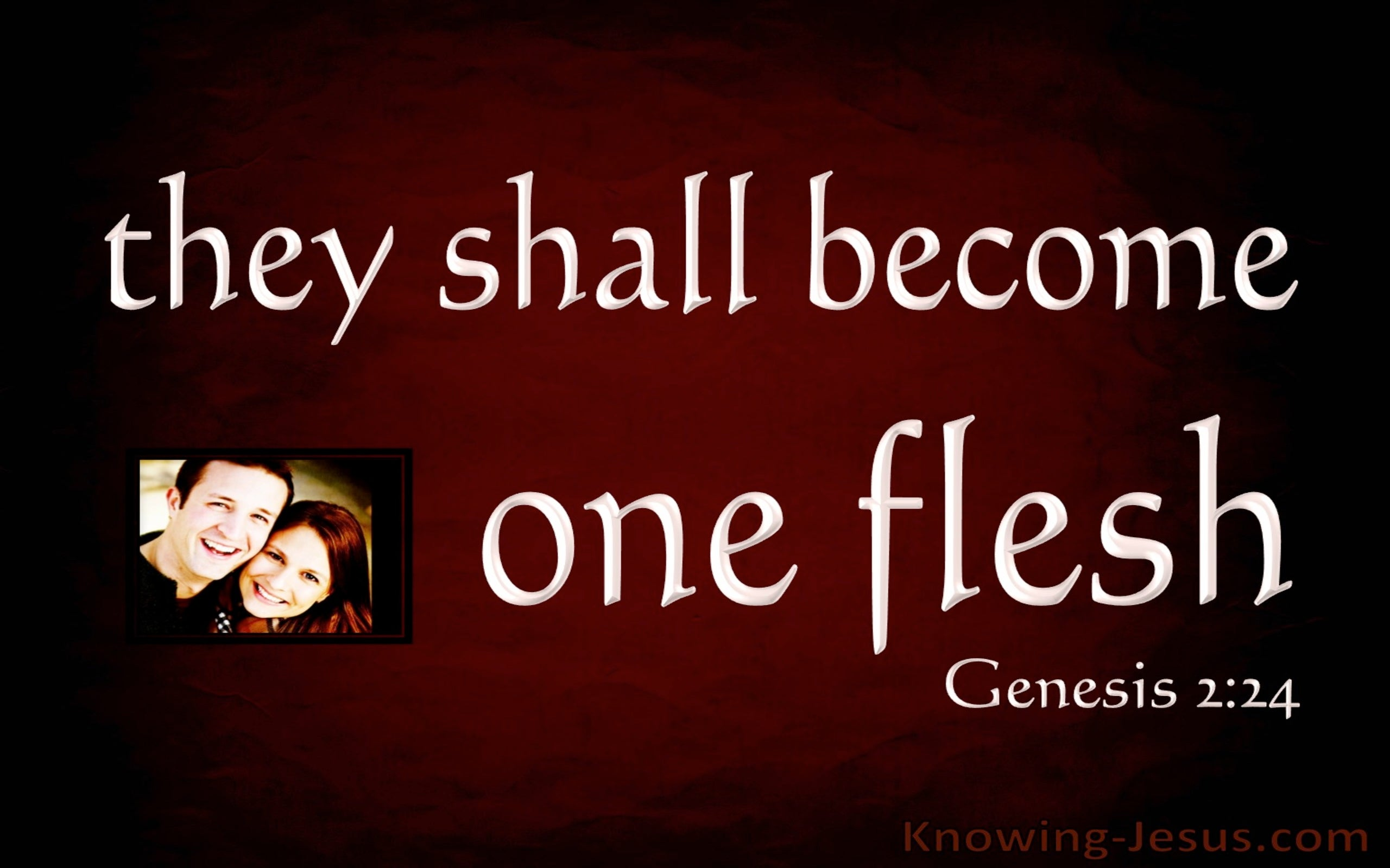 Genesis 2:24 Joined Together As One Flesh (maroon)