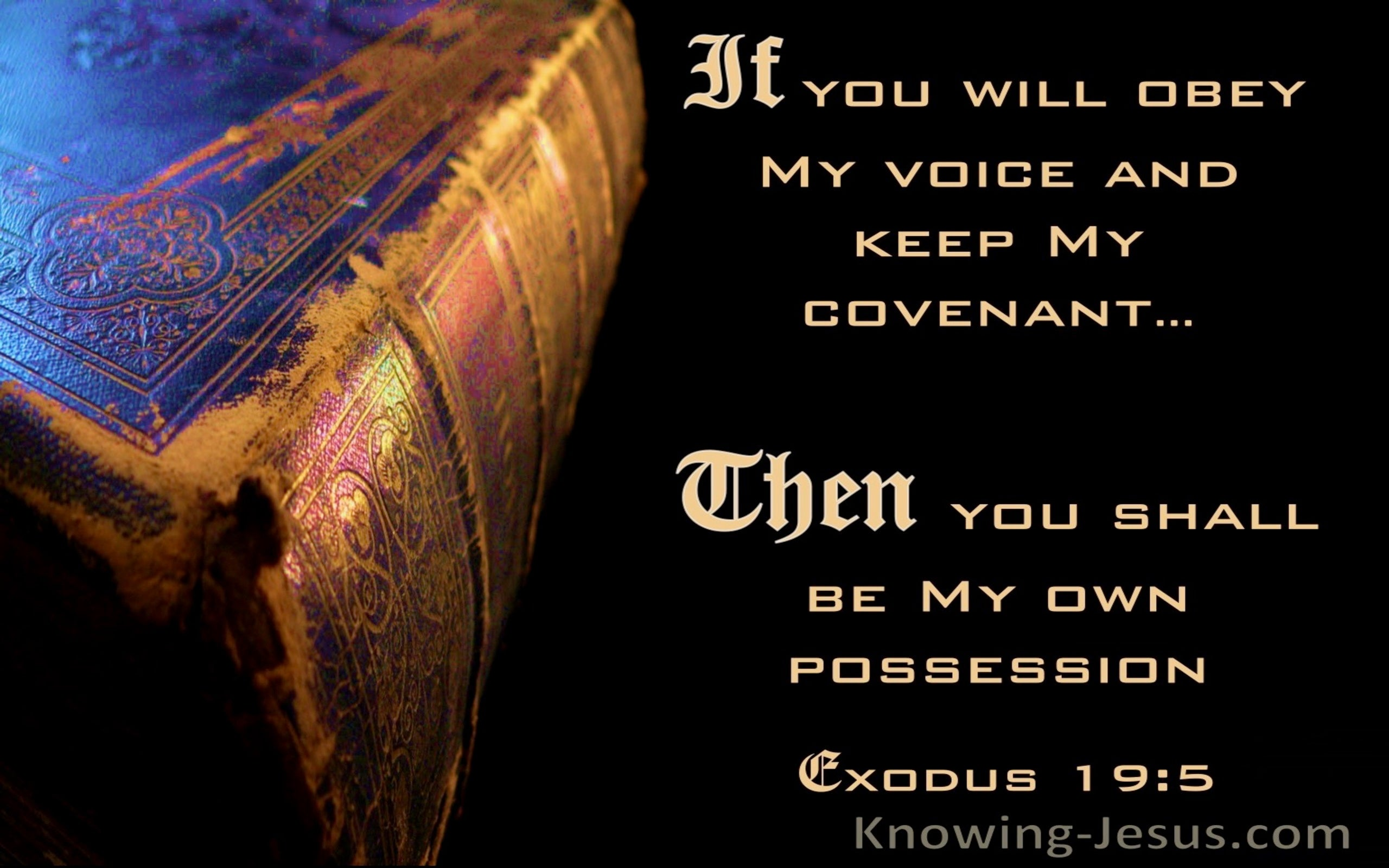Exodus 19:5 If You Will Obey My Voice Then You Will Be My Possession (blue)